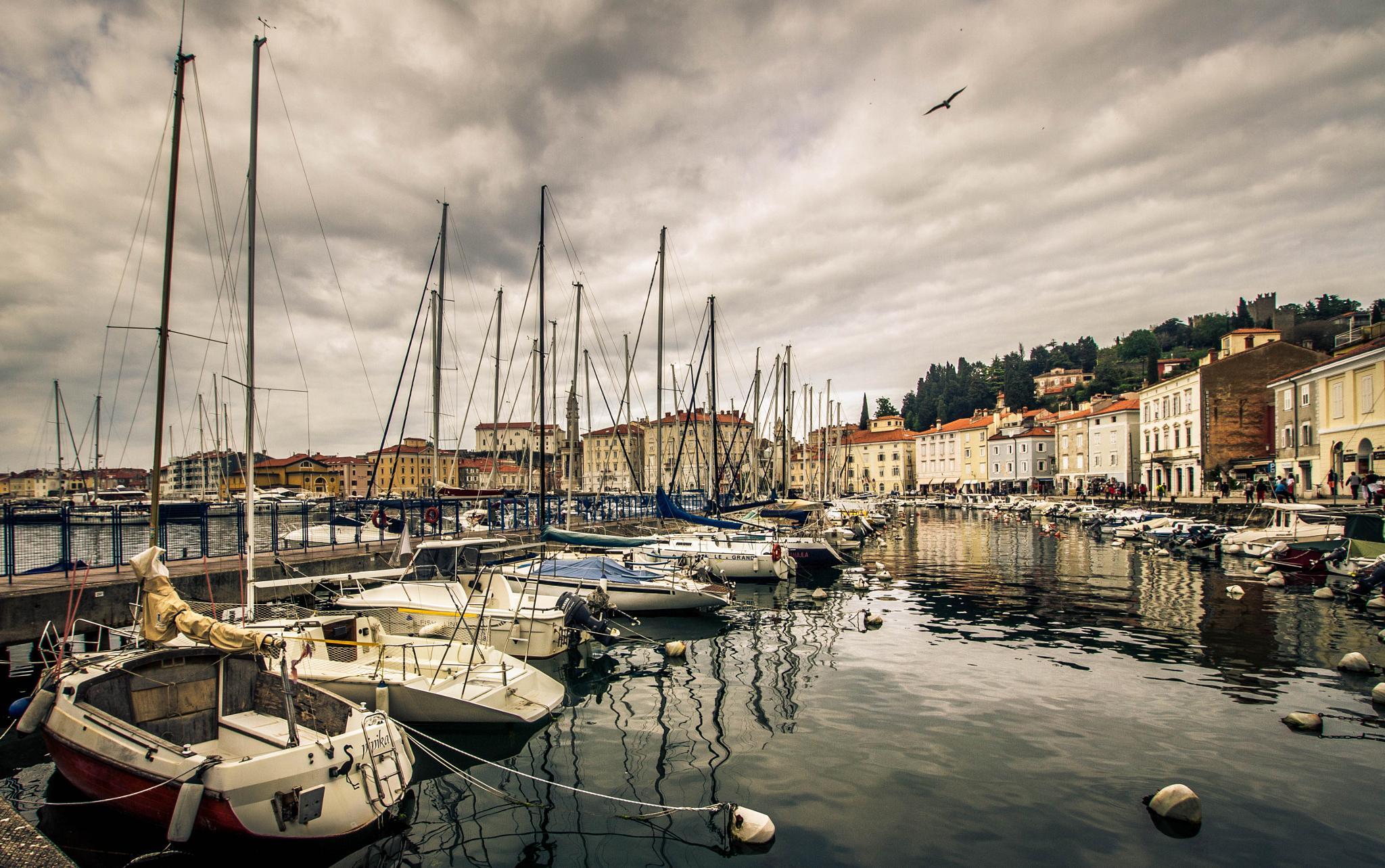 Photo in Travel #piran #slovenia #oldcity #harbor