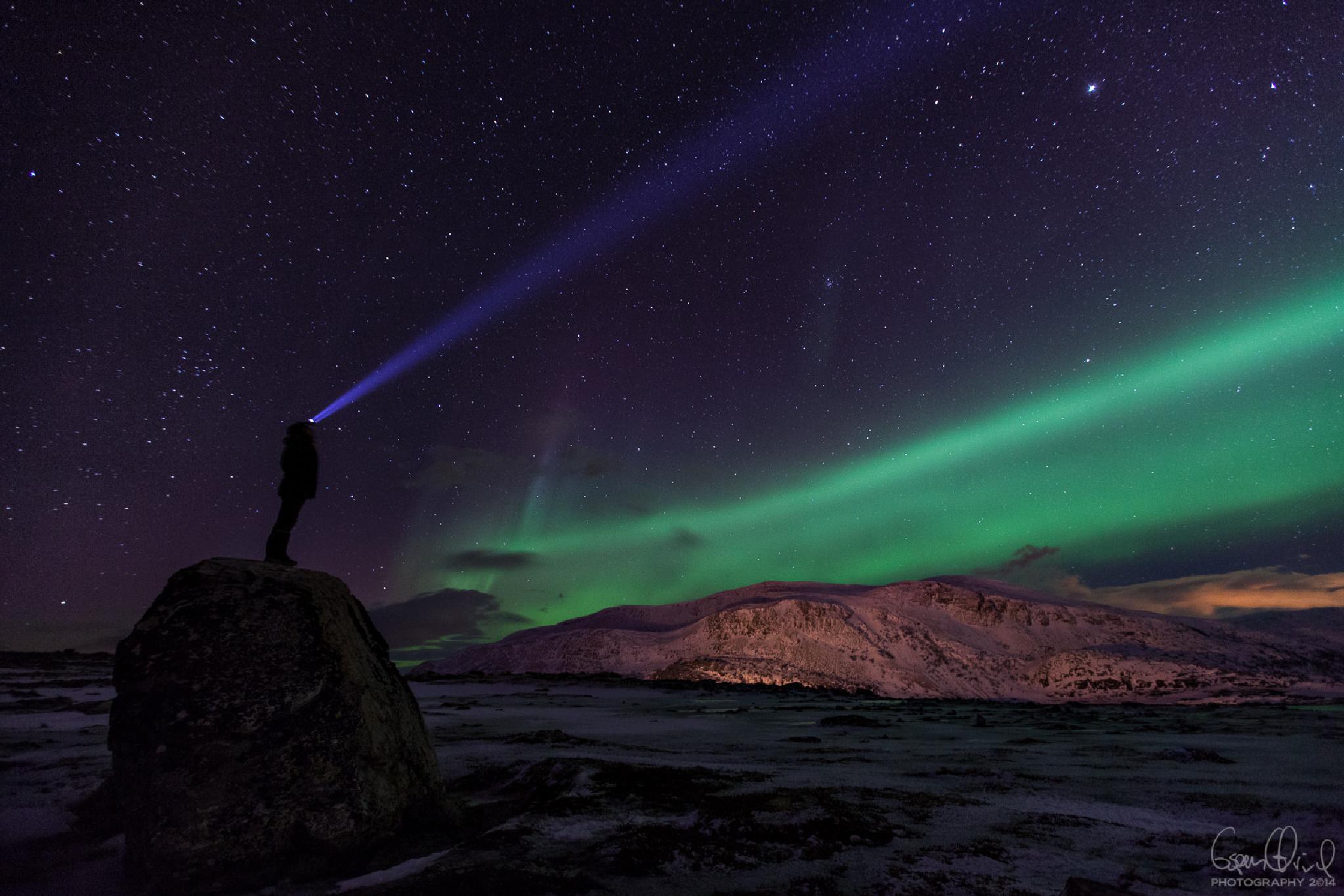 Photo in Landscape #aurora #boralis #finnmark #hammerfest #norway #terje #næss #espen #ørud #green #night #sky #stars #mountains #snow #winter