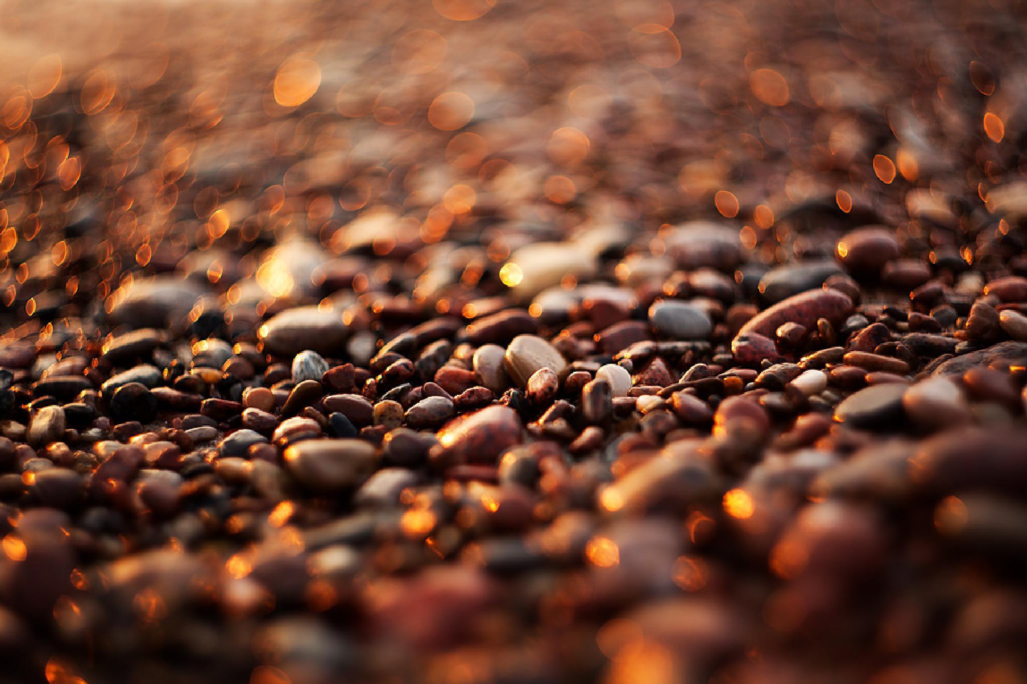 Photo in Macro #giedriusfoto #helios #pebble