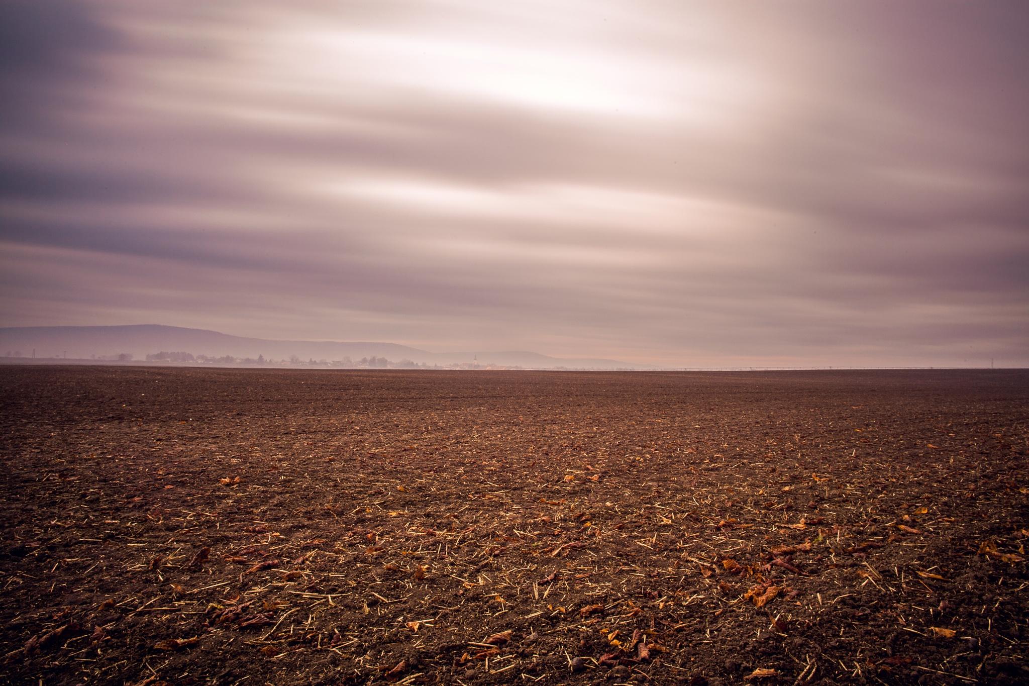 Sea of soil by Matej Kmet