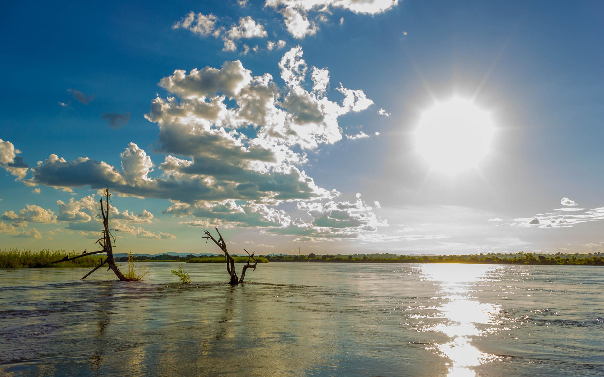 Great Zambezi by Kobus Odendaal