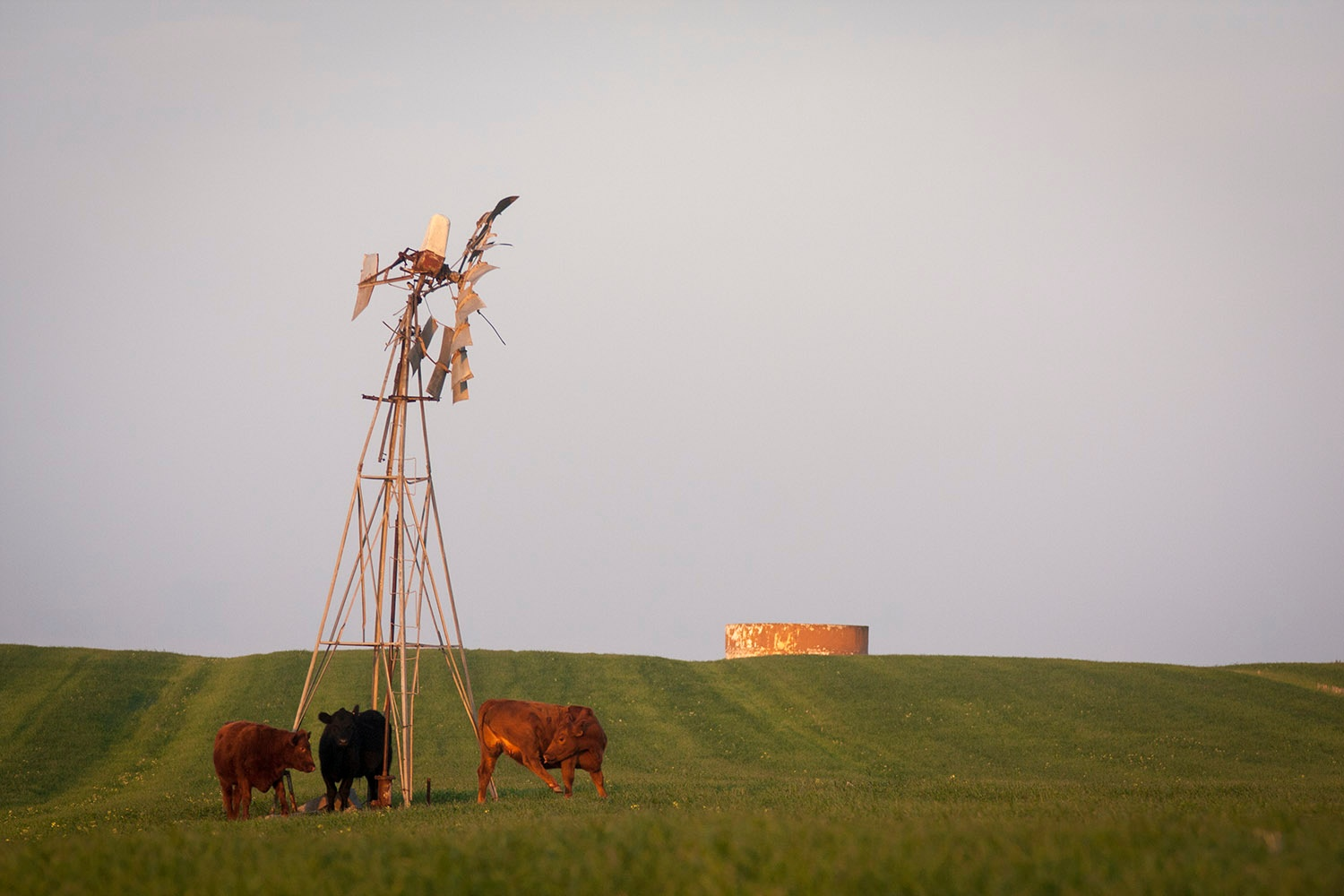 Kipheuwel Windmill by hassner