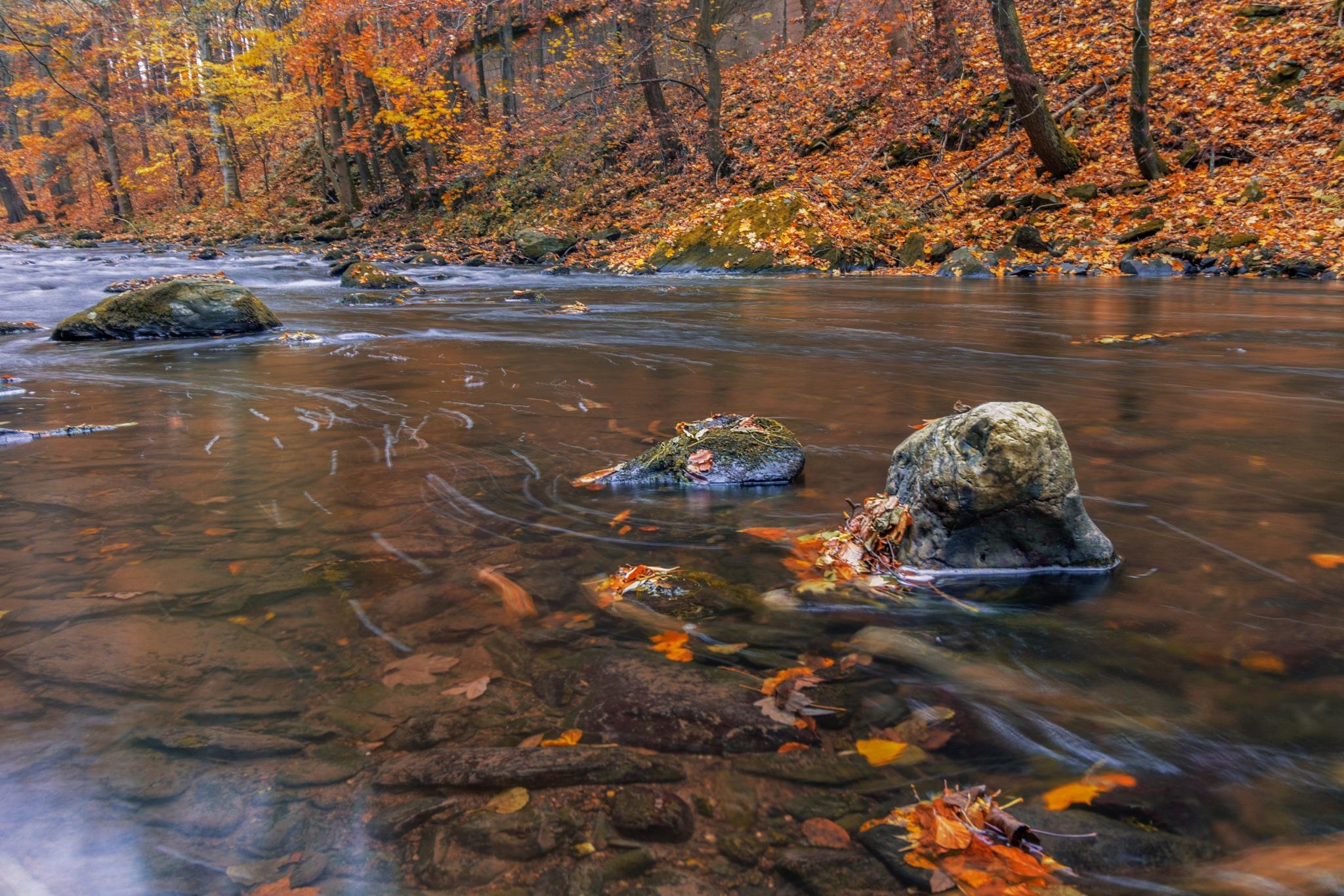 Autumn river 2 by zdenka.photo