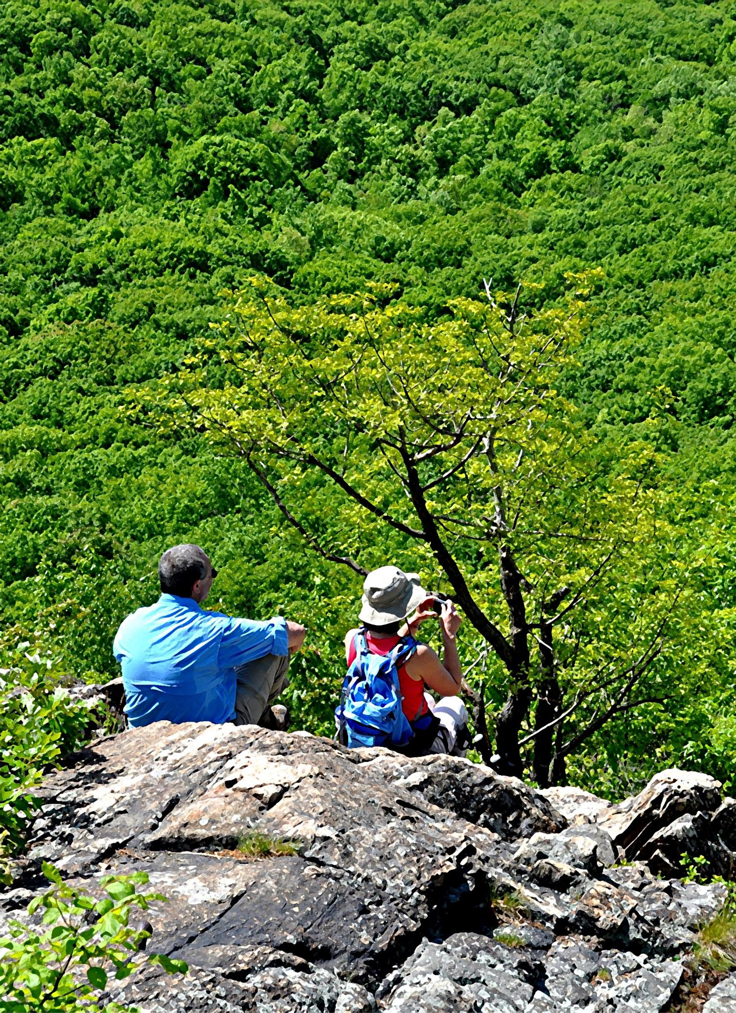 Hiker's View by Joeski
