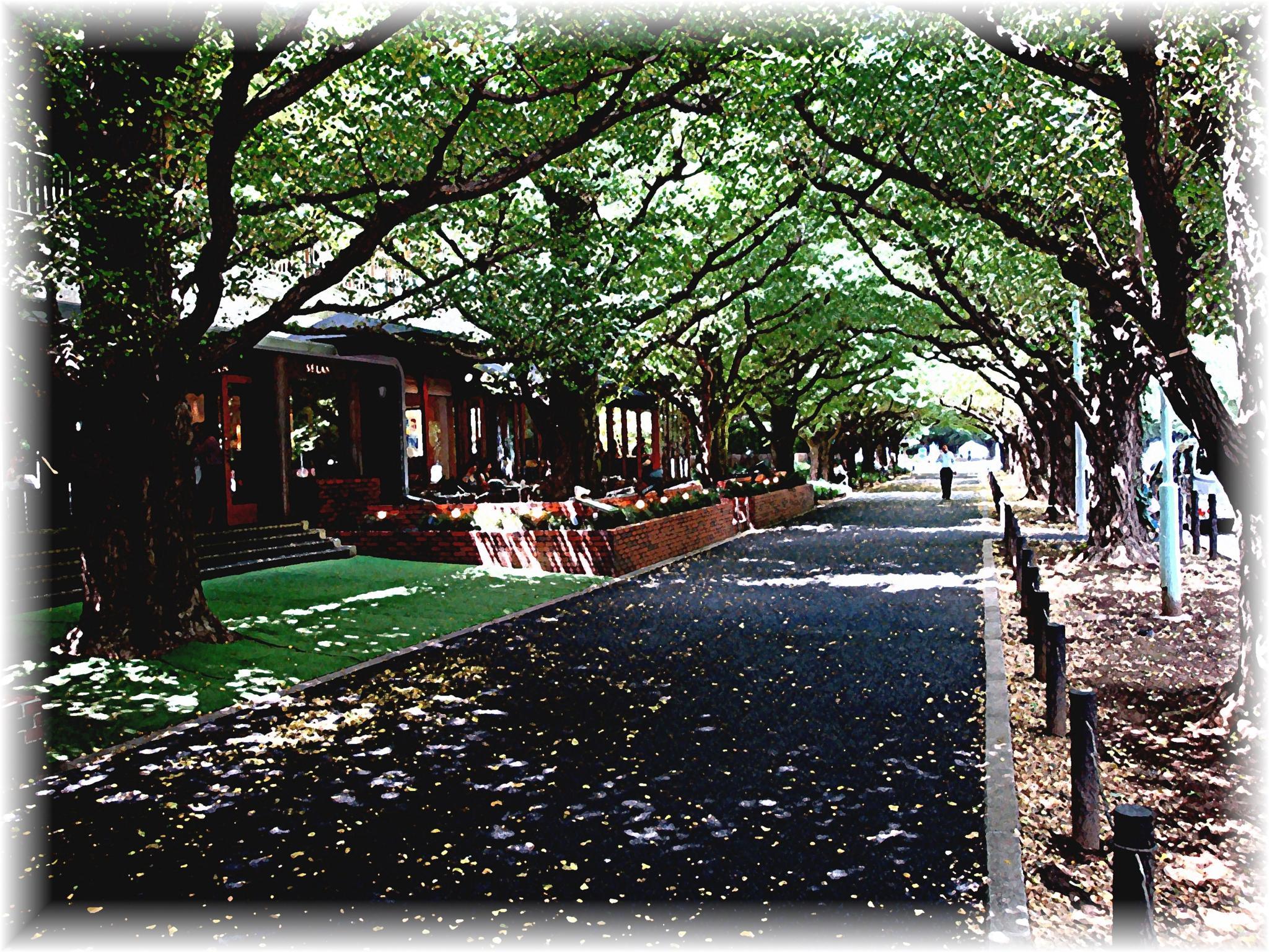 Shaded Street by Joeski