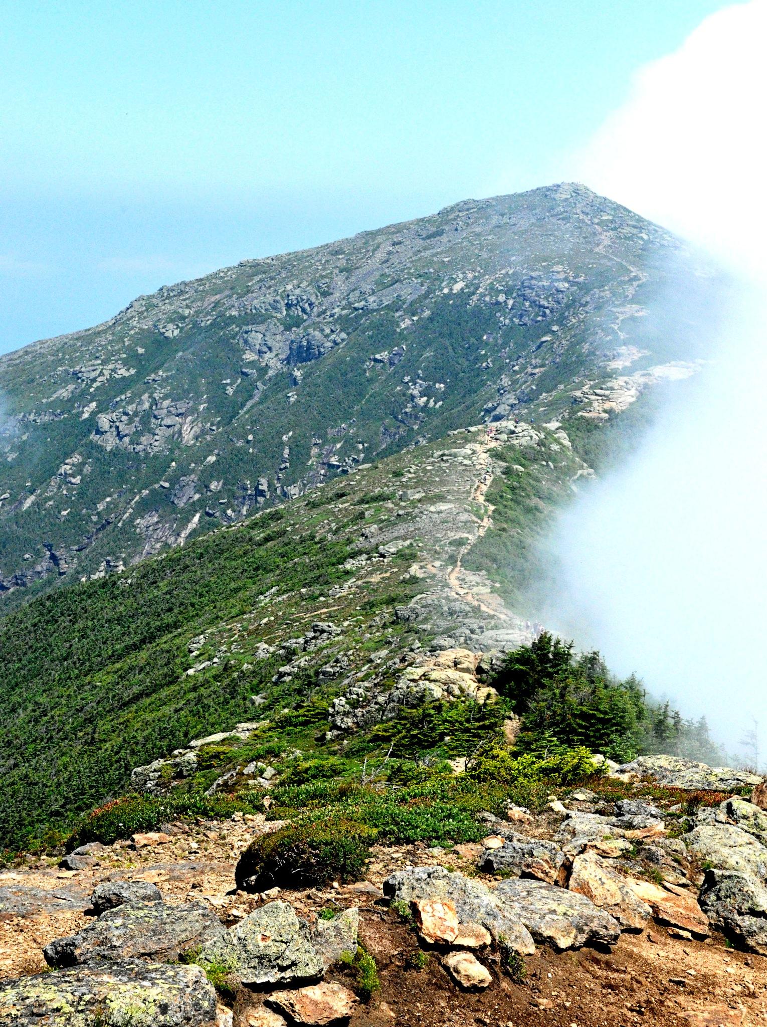 Ridge Trail by Joeski