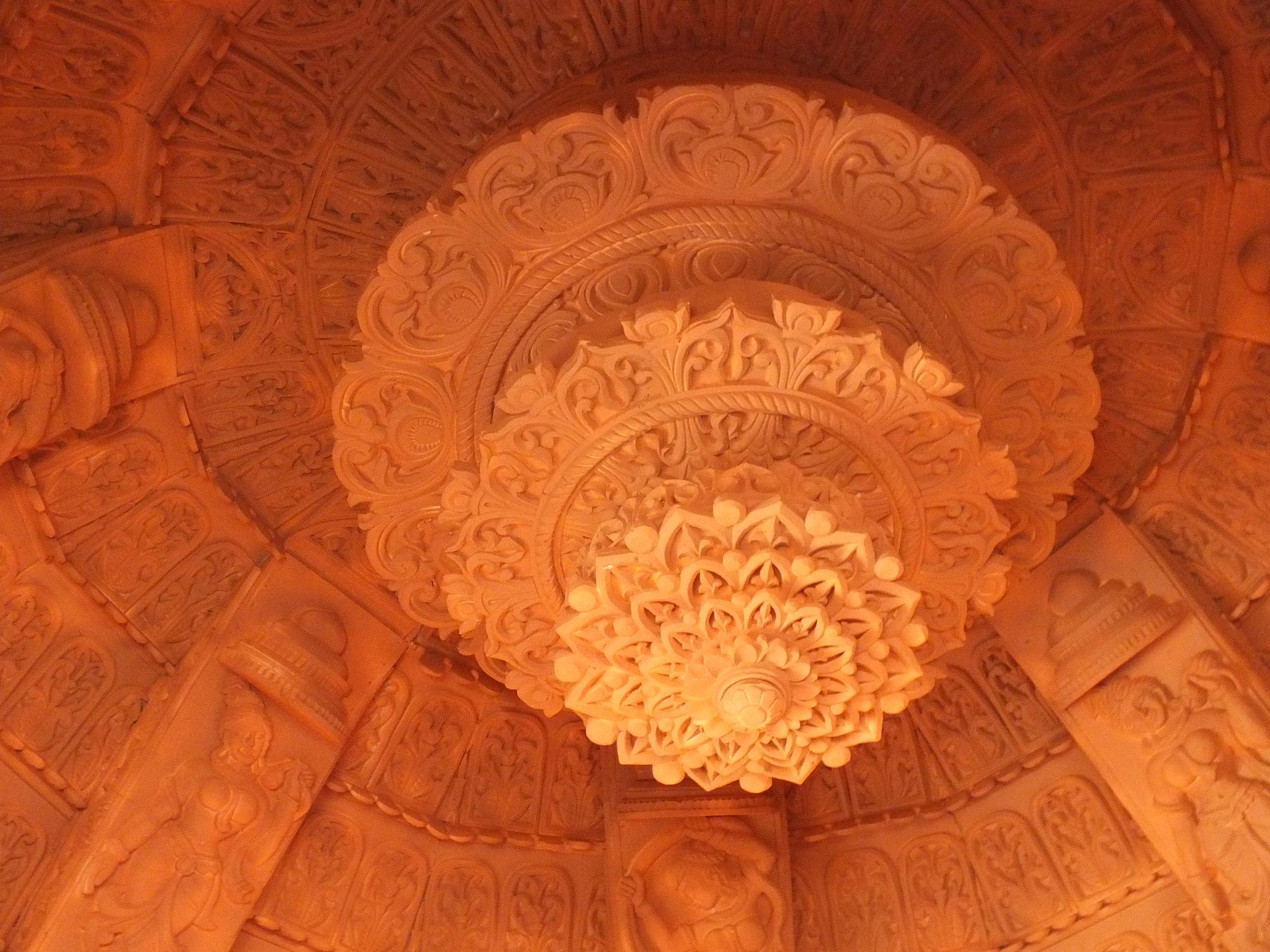 Dome of pandal by Mainak Adak