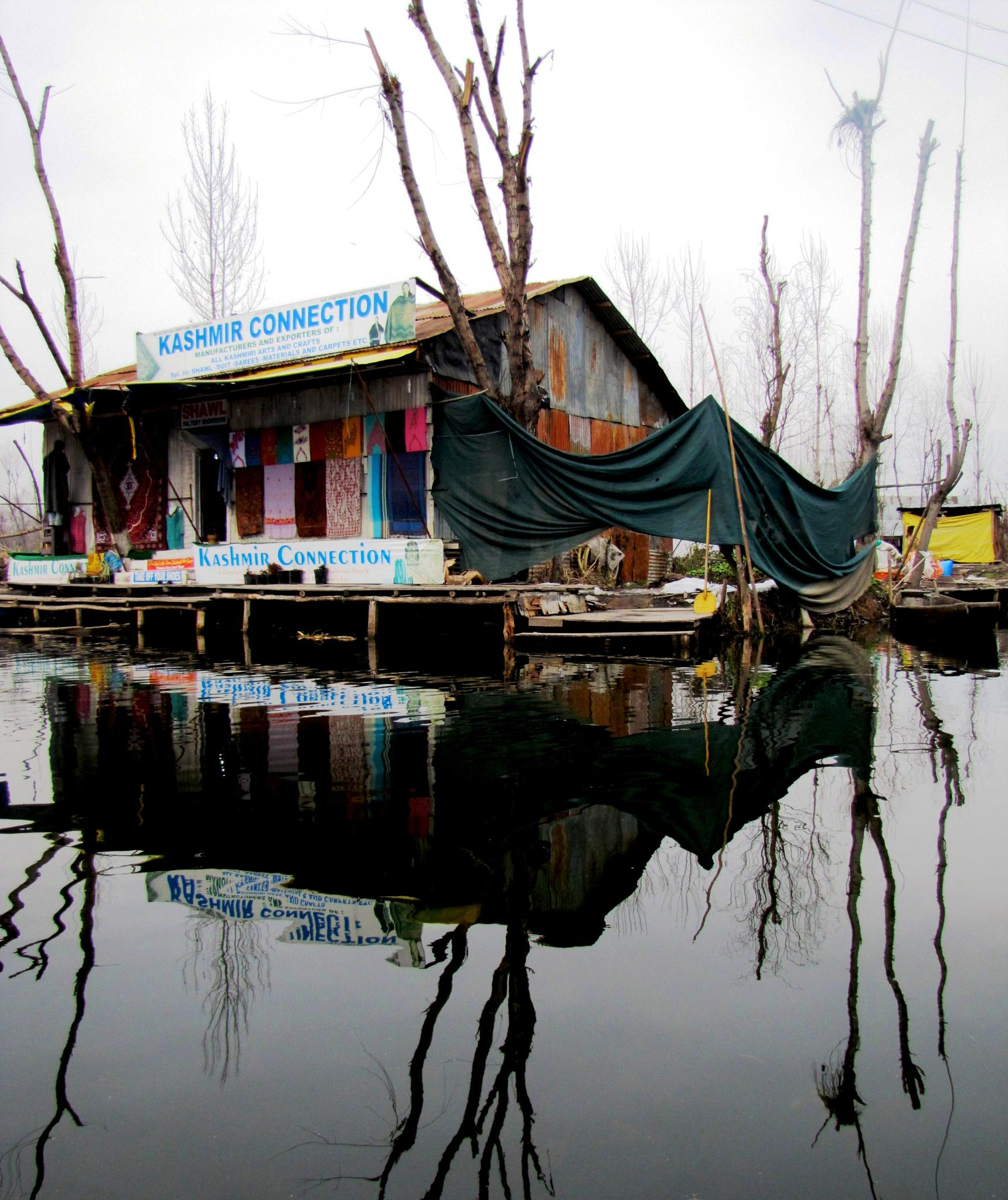 Reflections by kanwar.rajput.5