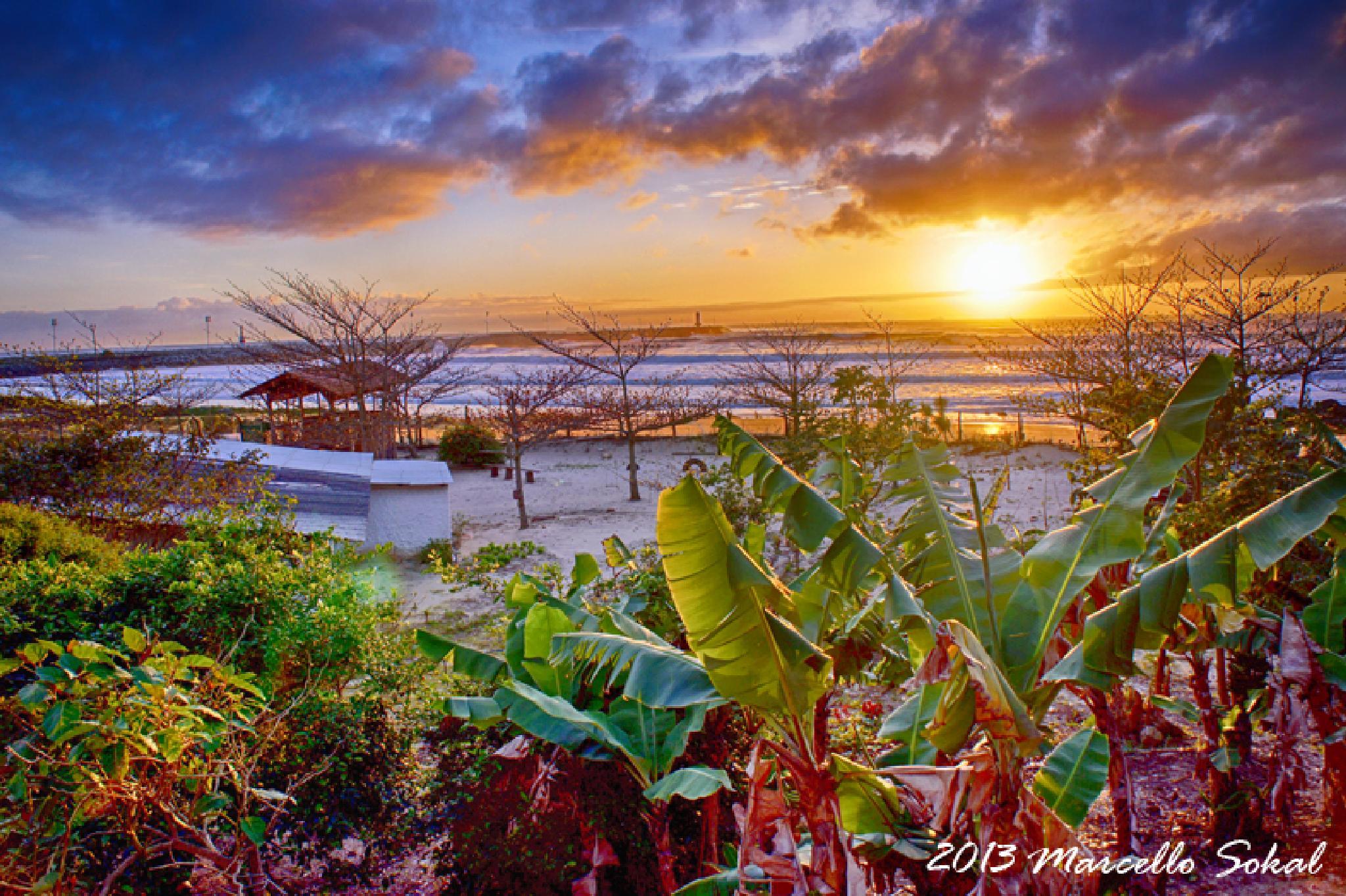 Photo in Travel #sunrise #amanhecer #dia #sol #luz #light #beach #praia #marcello #sokal