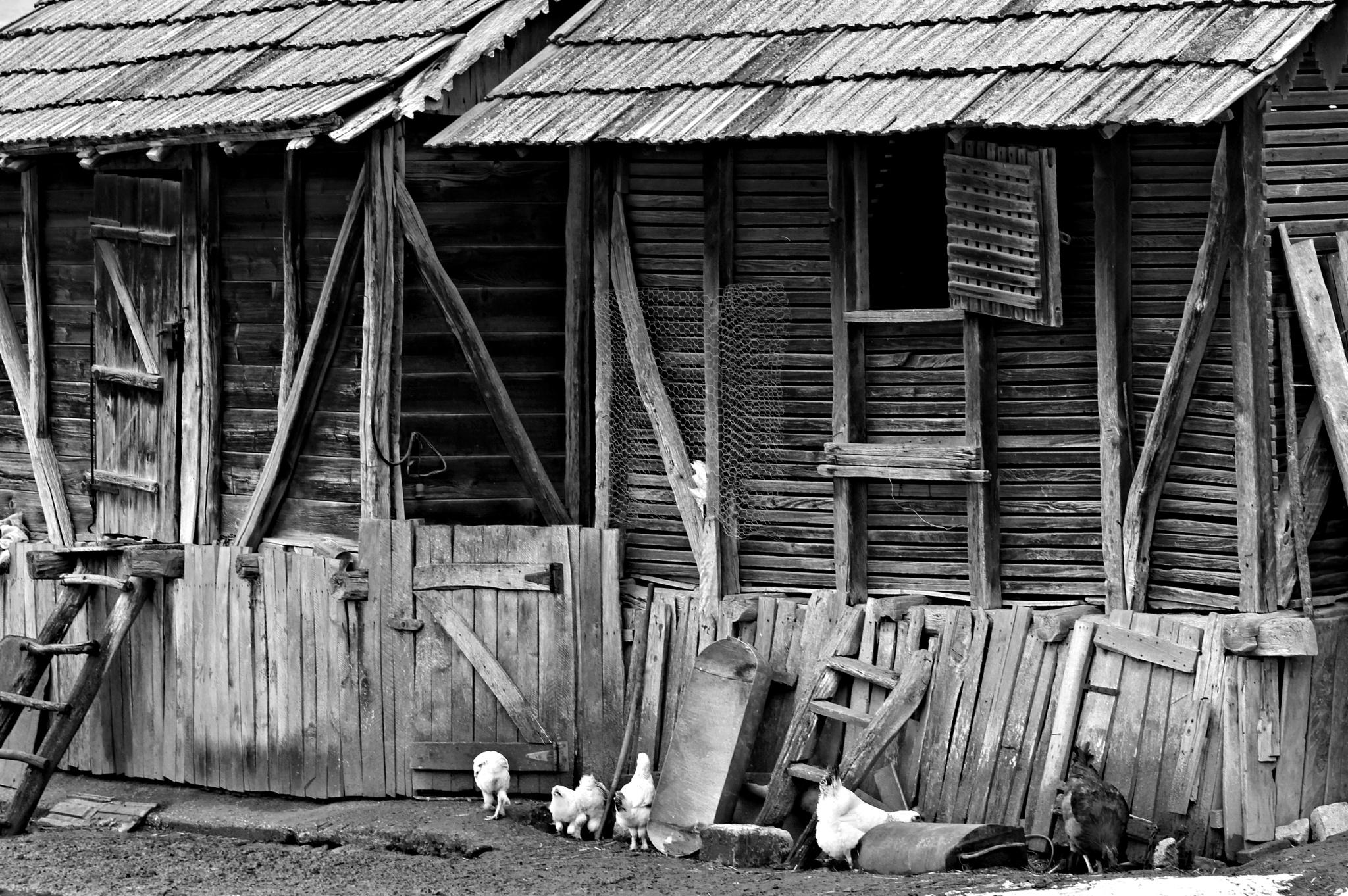Home sweet home by alin.dijmarescu