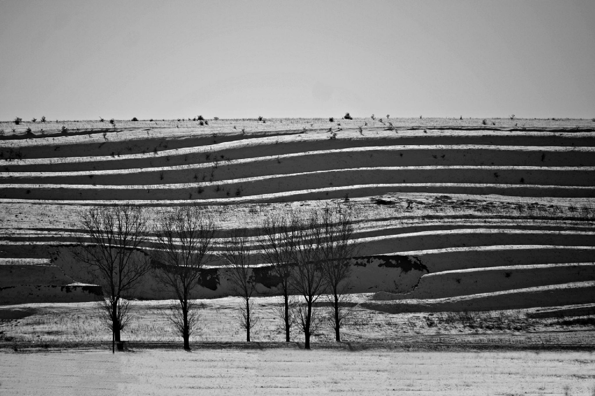 Shapes by alin.dijmarescu