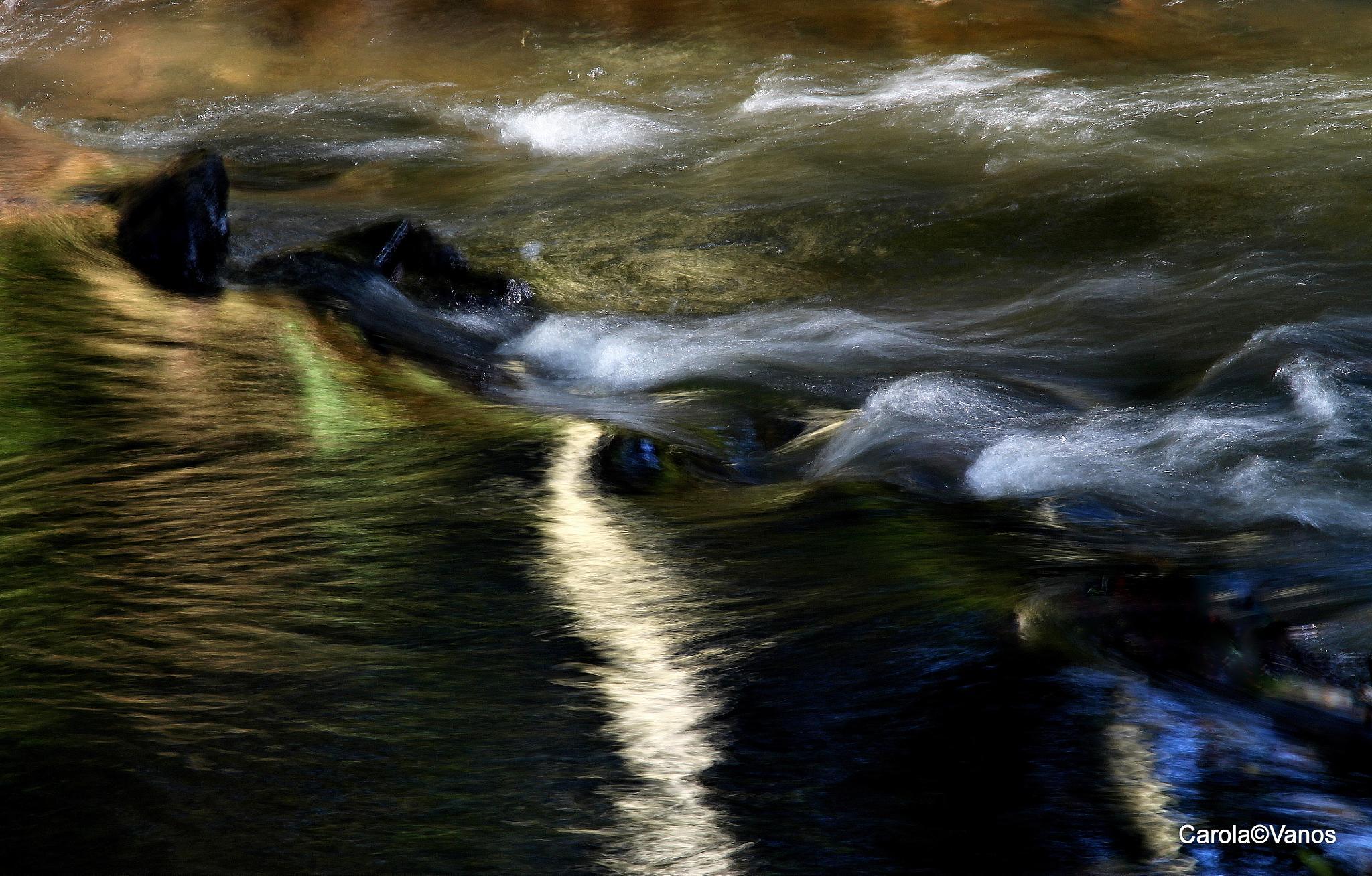 Indian Waterstream by carolalupa