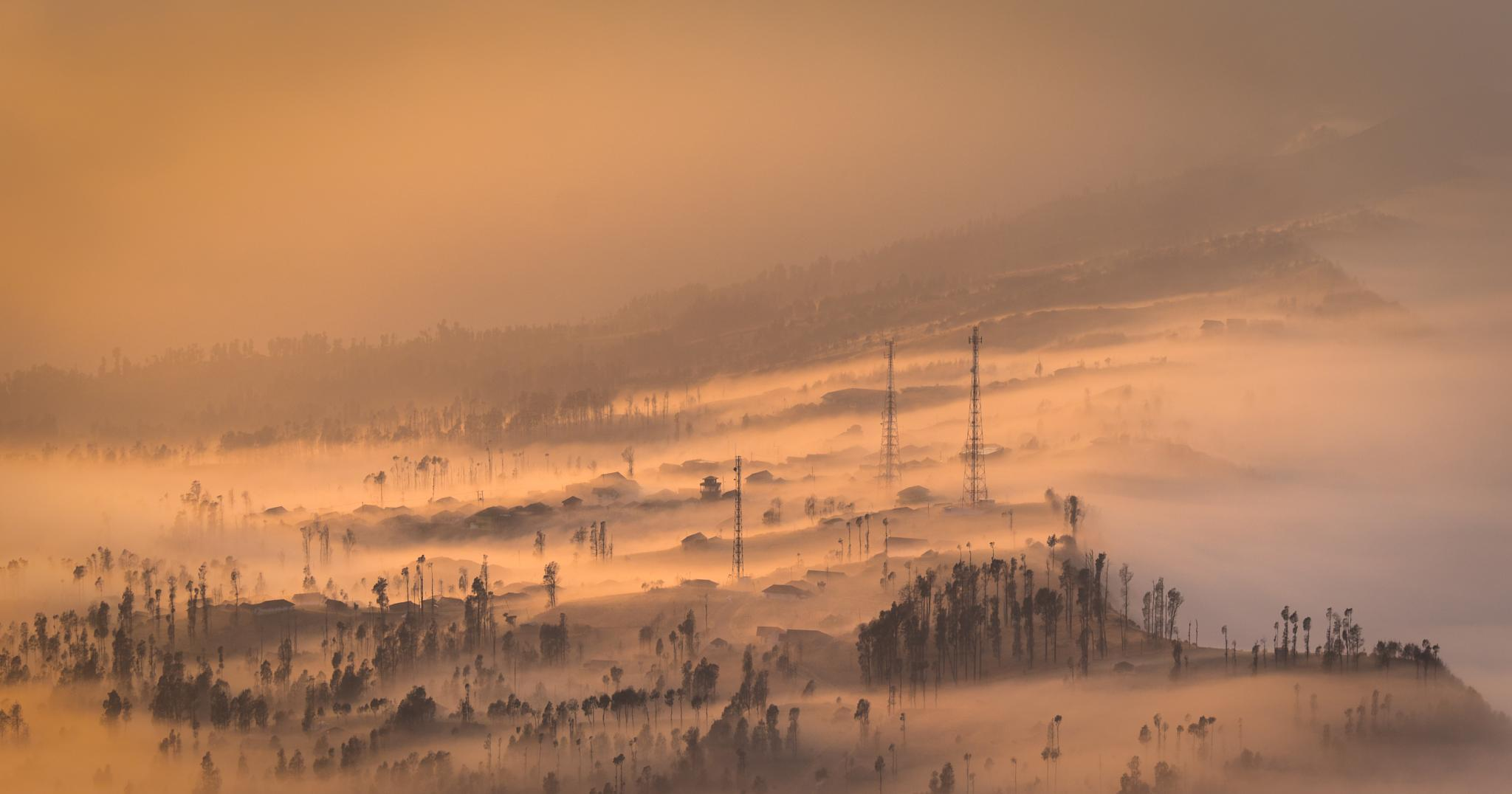 Morning in the mist by sawinism
