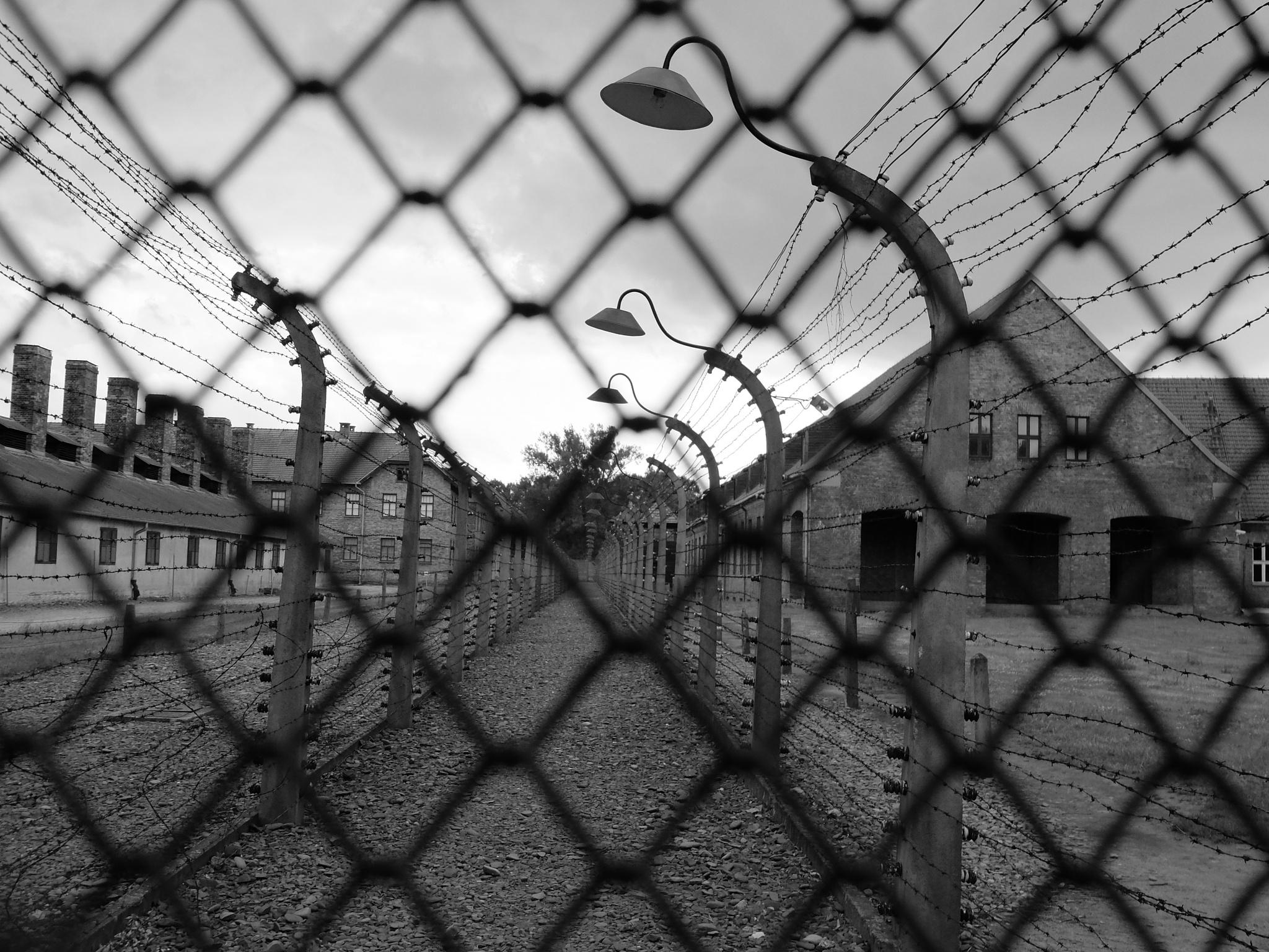 Auschwitz 2 by gigi.sorrentino1
