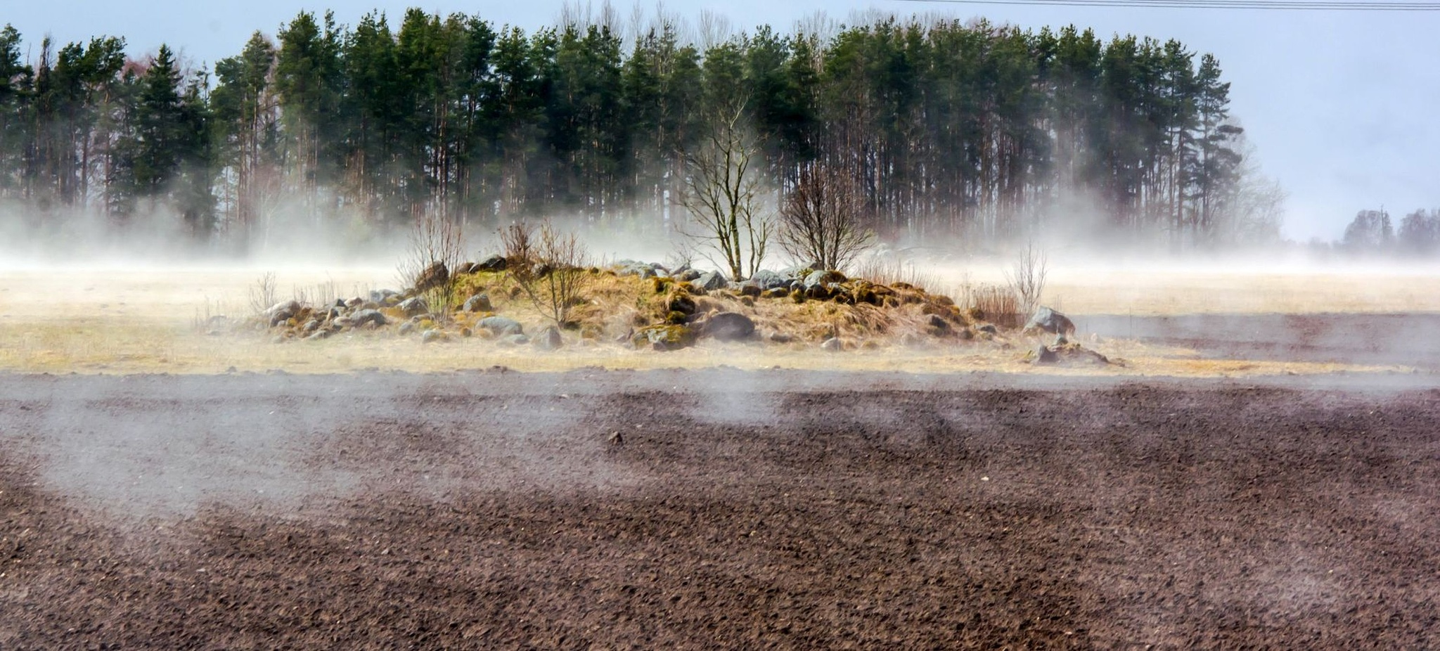 Field in steam by deville66