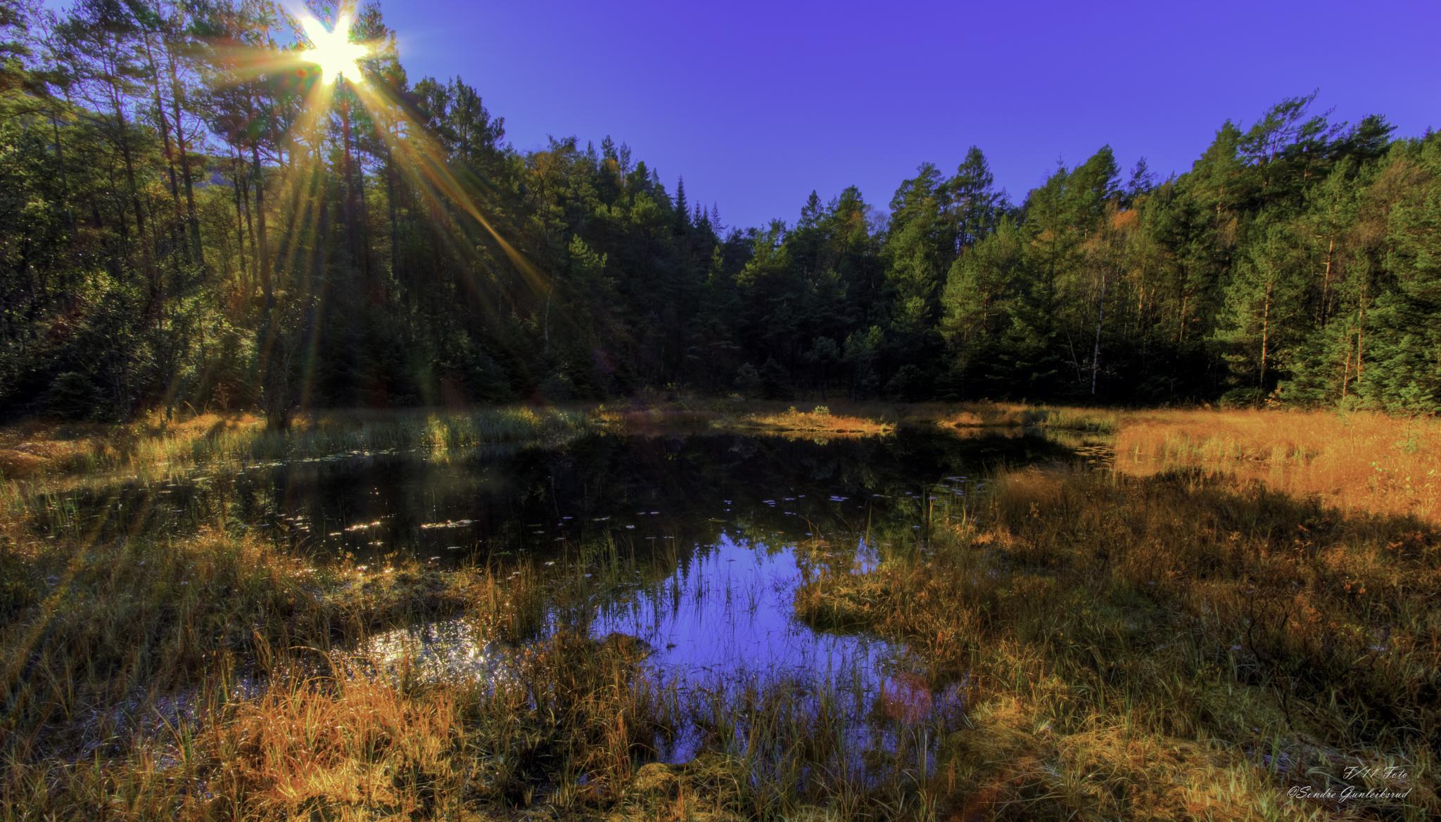 When the sun comes up by sondre.gunleiksrud