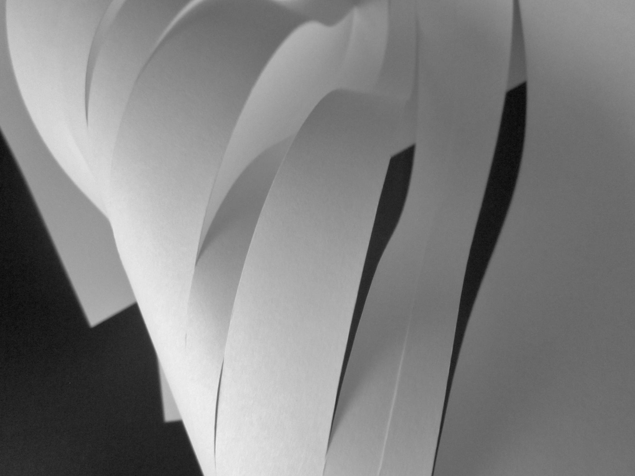 papiersculptuur by pierrevandenbroeck1