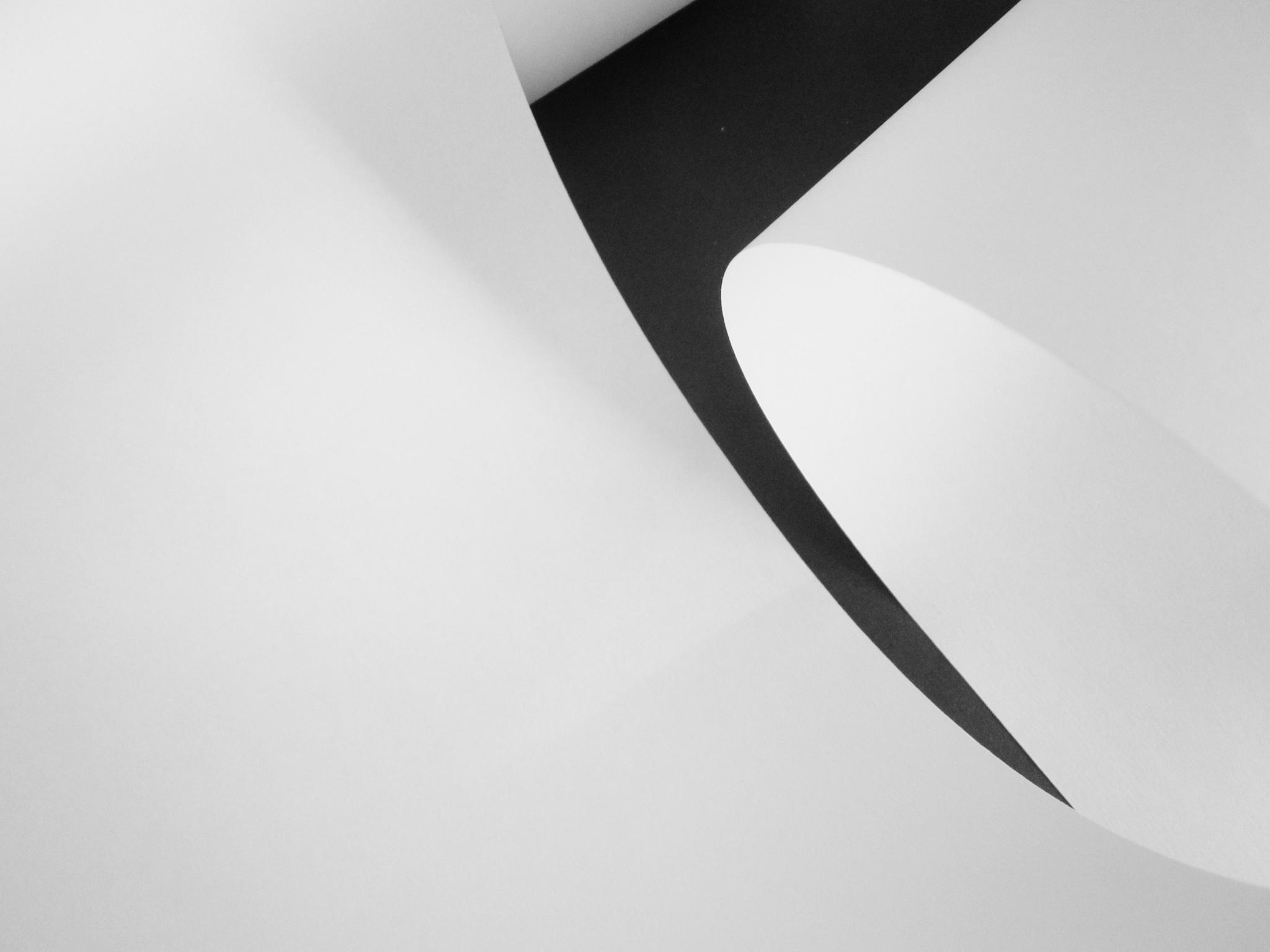 papiersnede by pierrevandenbroeck1