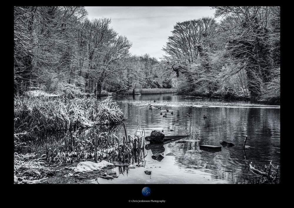 Photo in Landscape #mono #water #snow #valley