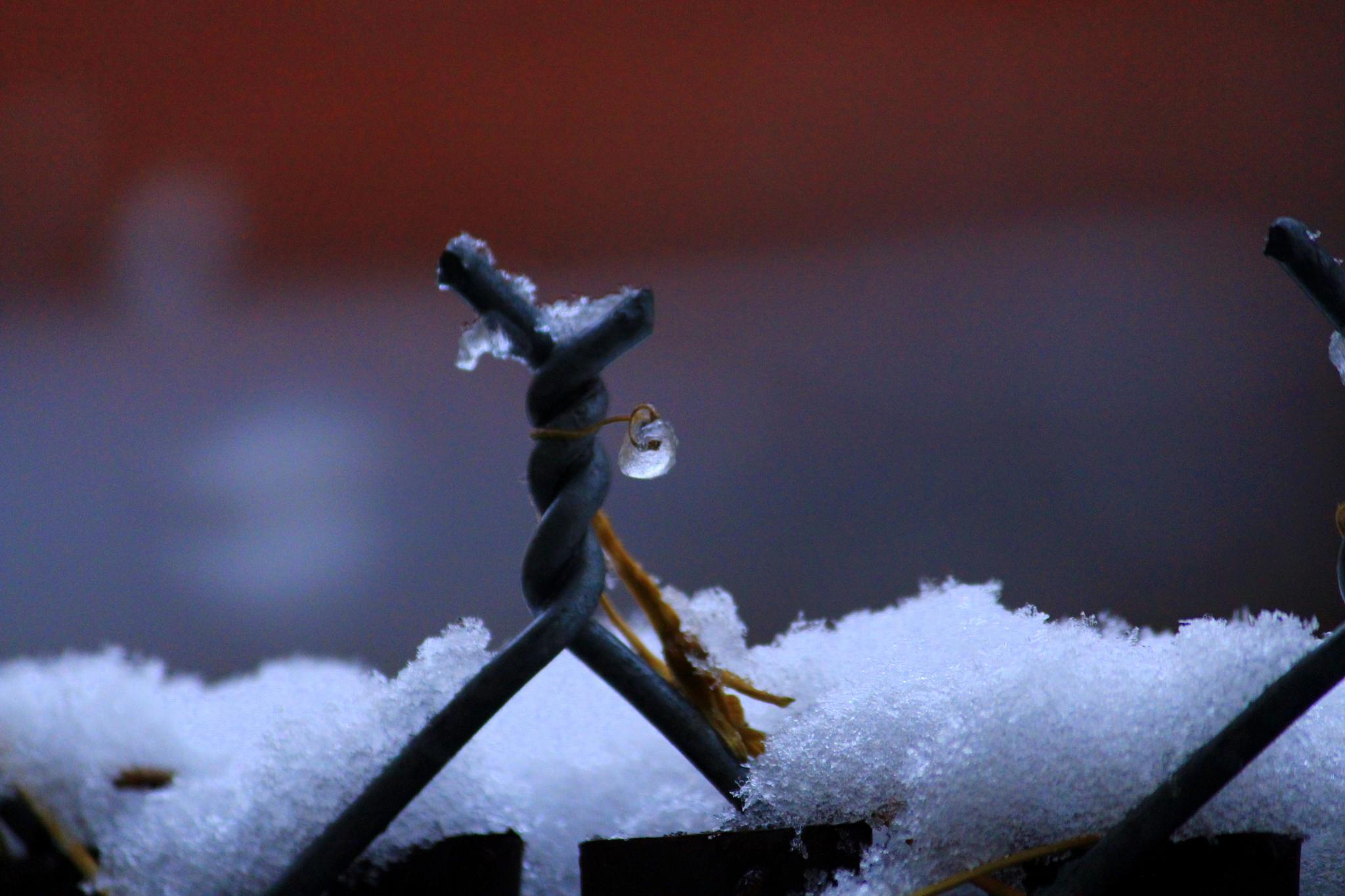 Frozen... by sreeharishs