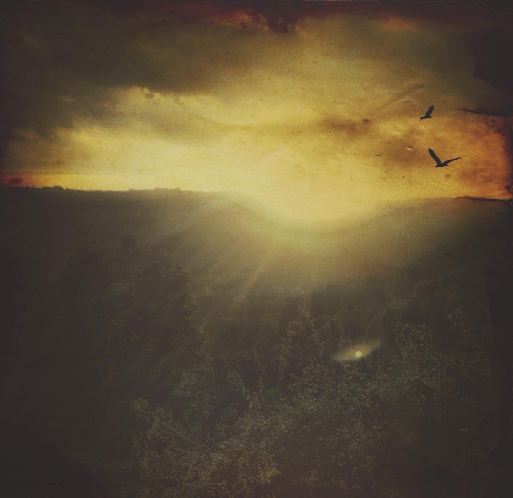pictorial.sunset by [º] r e v e r s i d e _