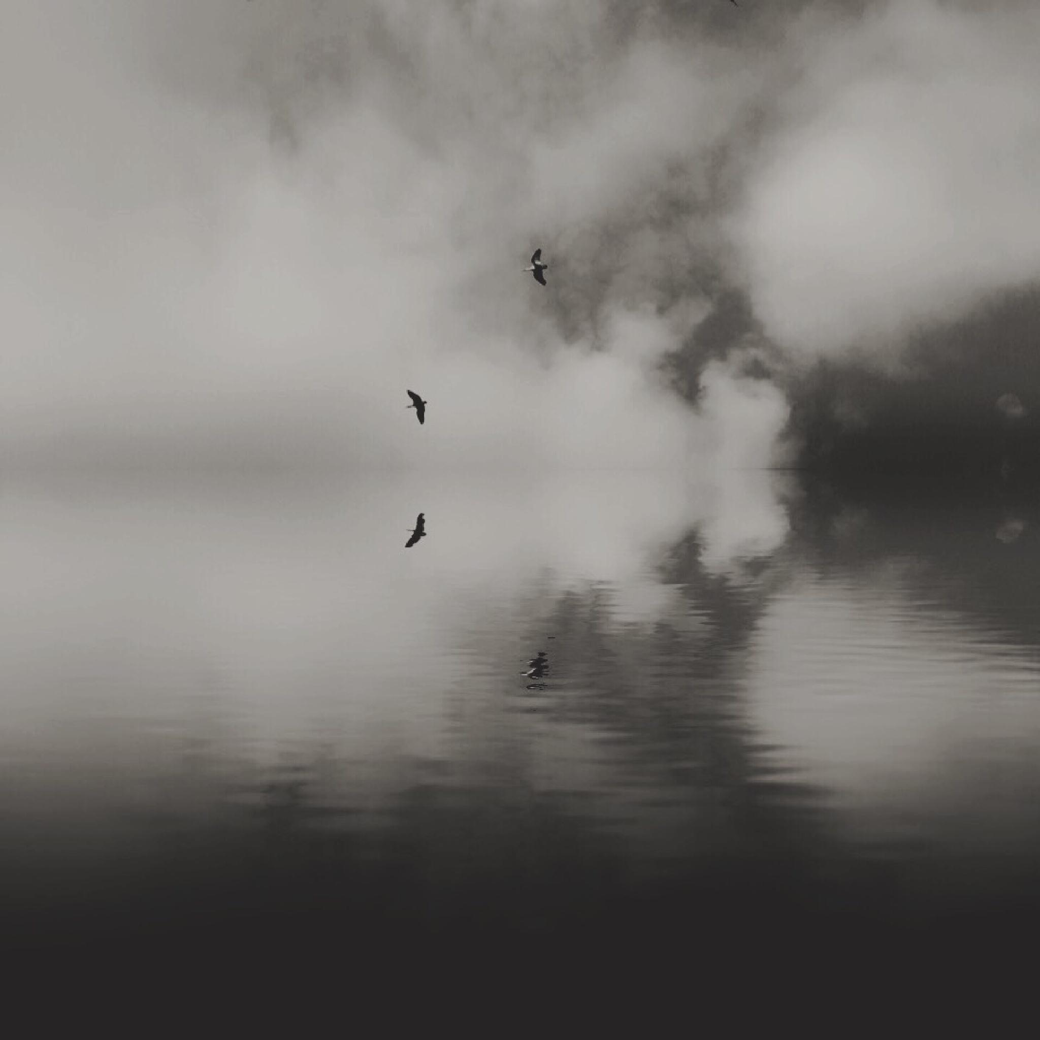 [•] soulscape_ by [º] r e v e r s i d e _