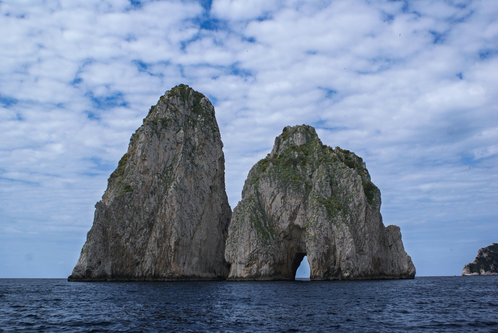 Gorilla  Rock  Sea by moti.vagman