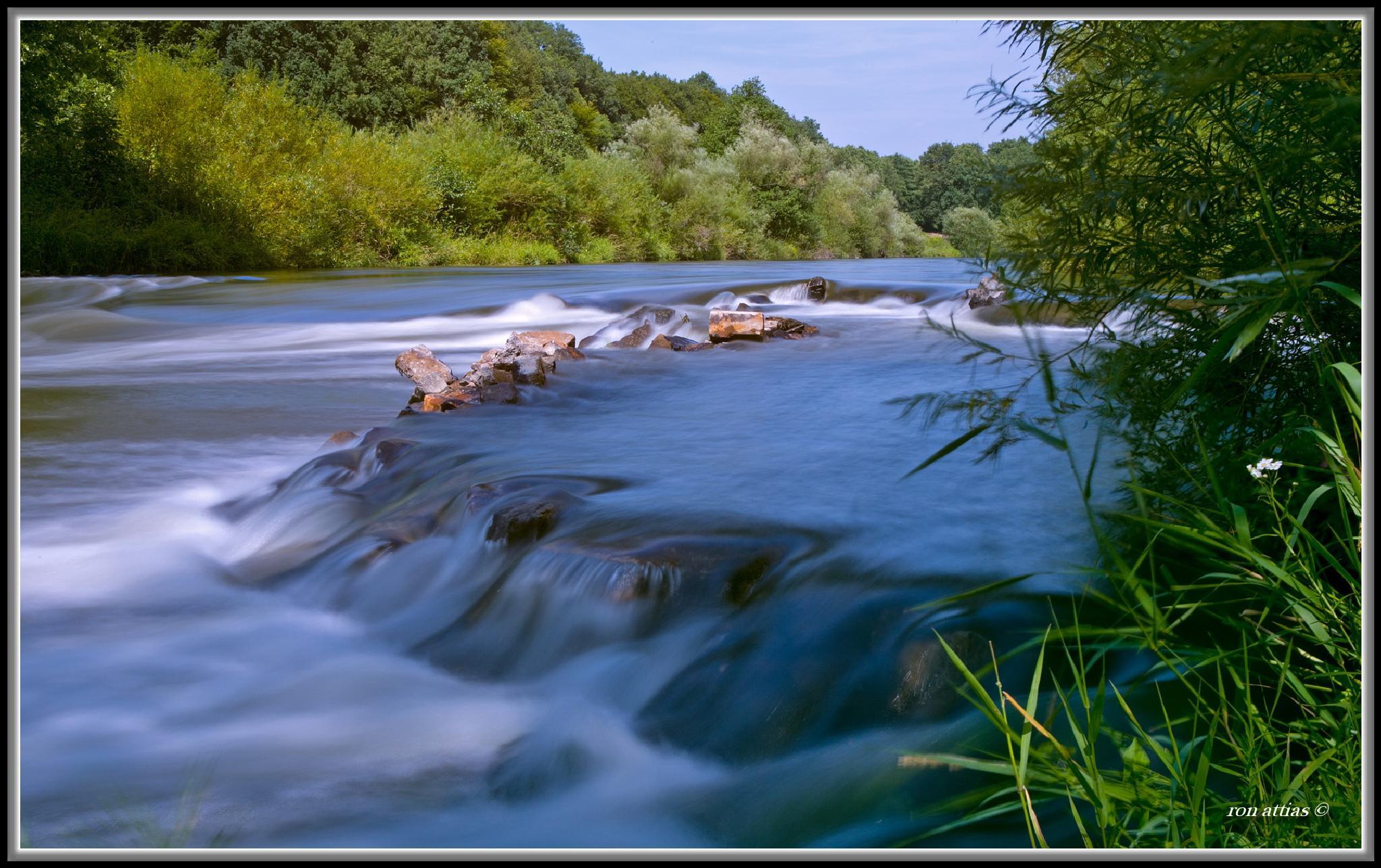 Jordan River, Israel by ron.attias.7