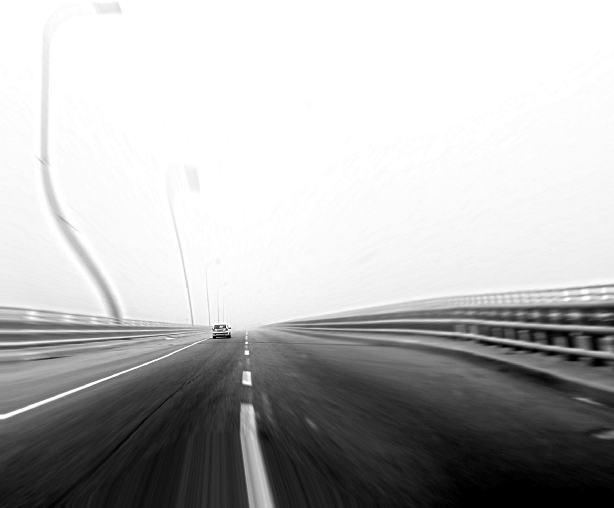 Into the fog by dany.kahanovitch