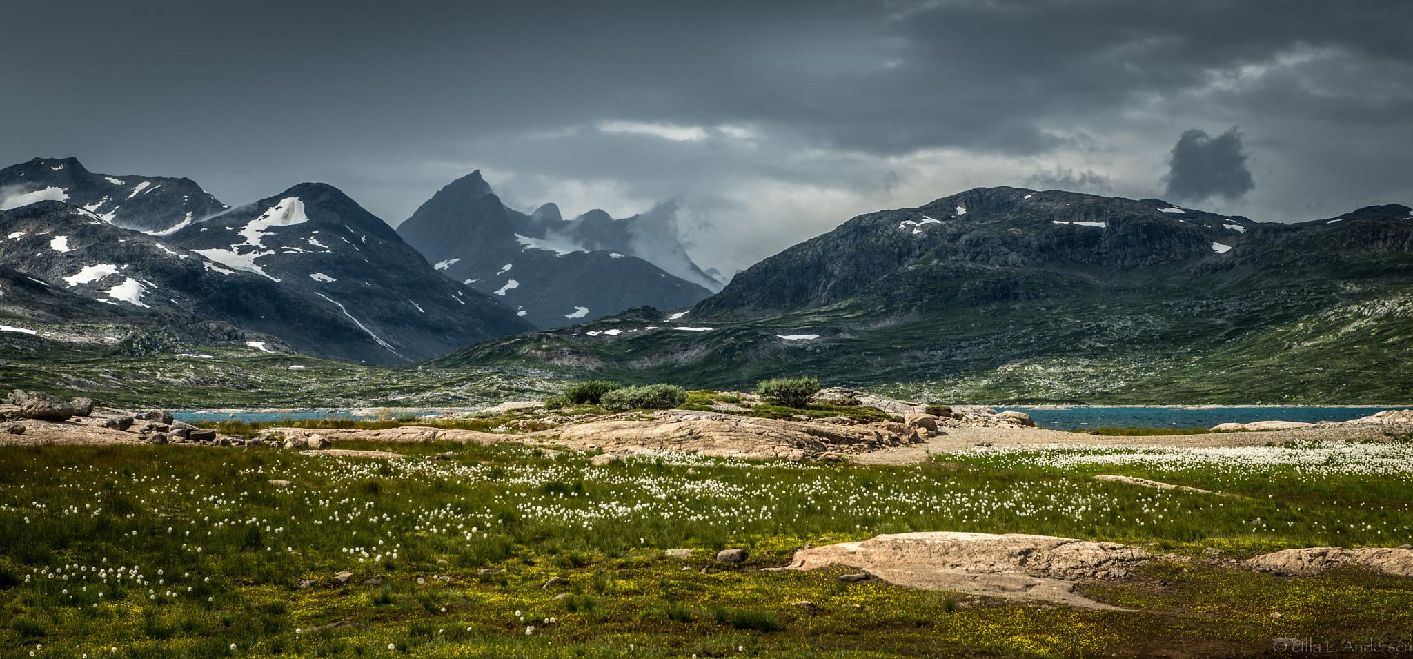Mountains in Norway by Ulla Lippert Andersen