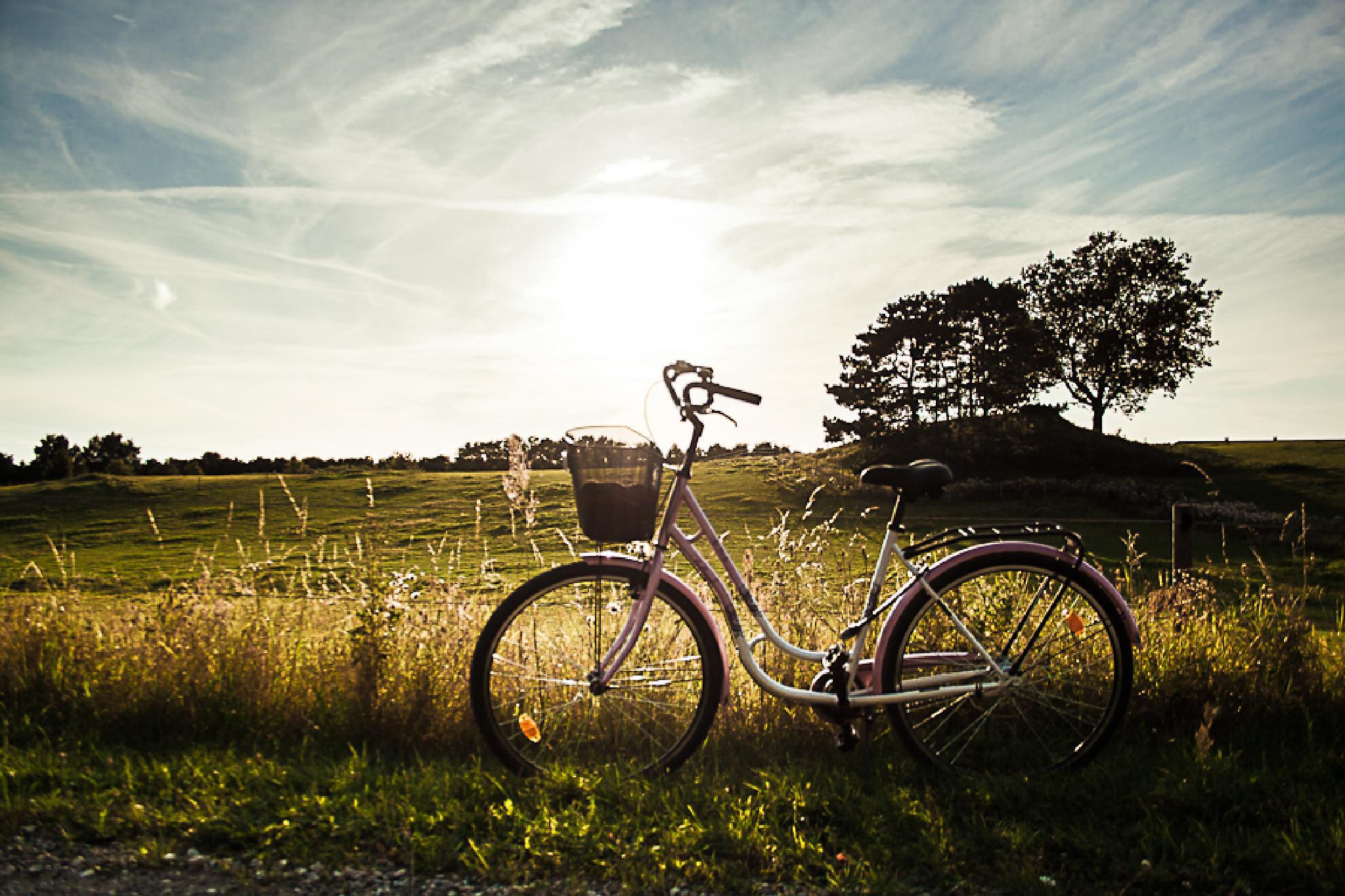 Late summer day by Johann Ingi