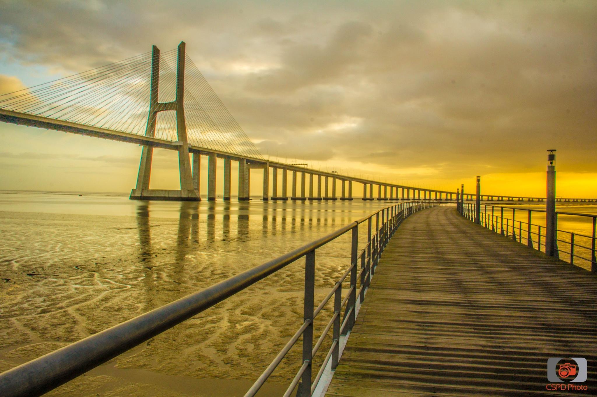 PVG sunrise by Carla Dias