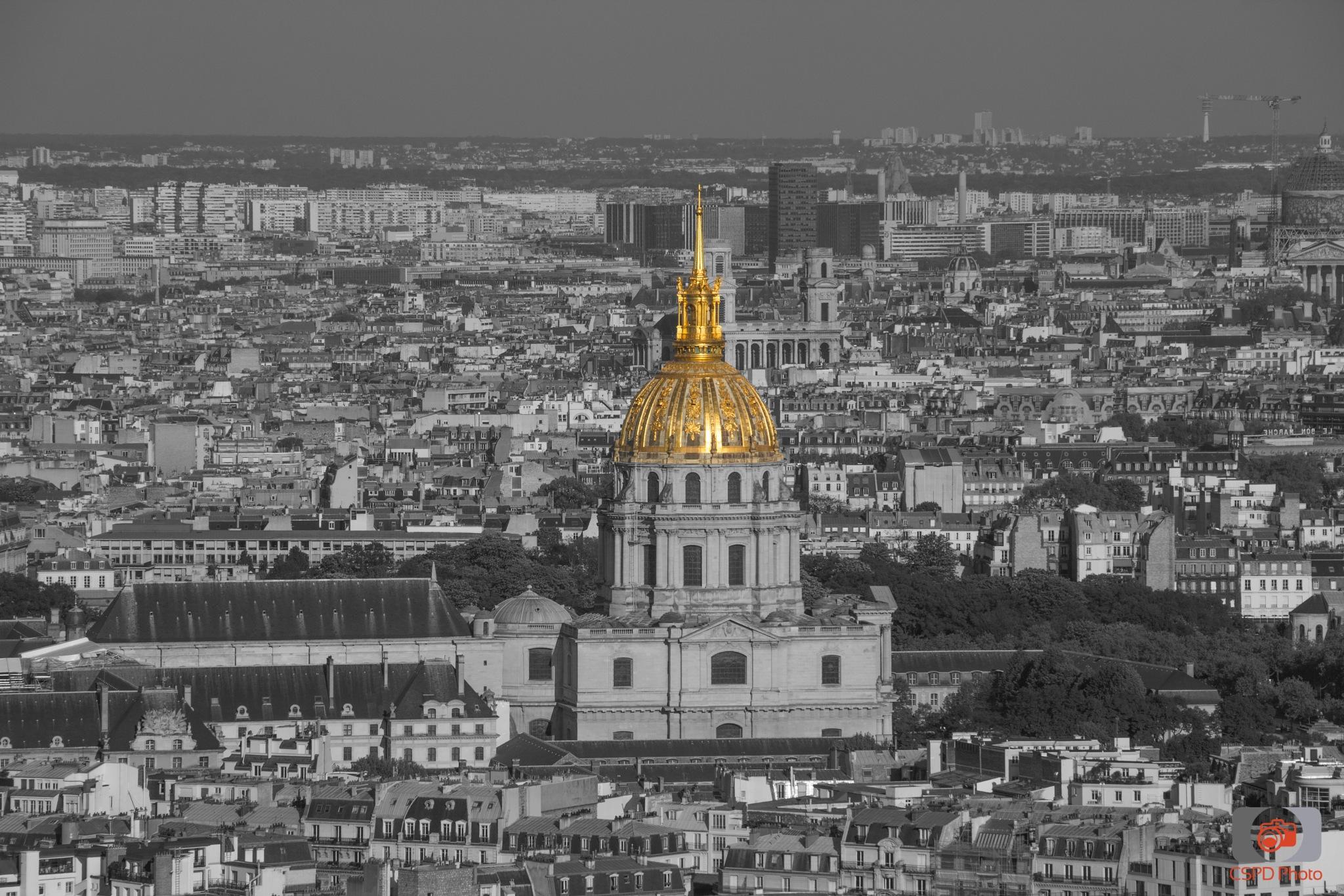 Paris Cityview by Carla Dias