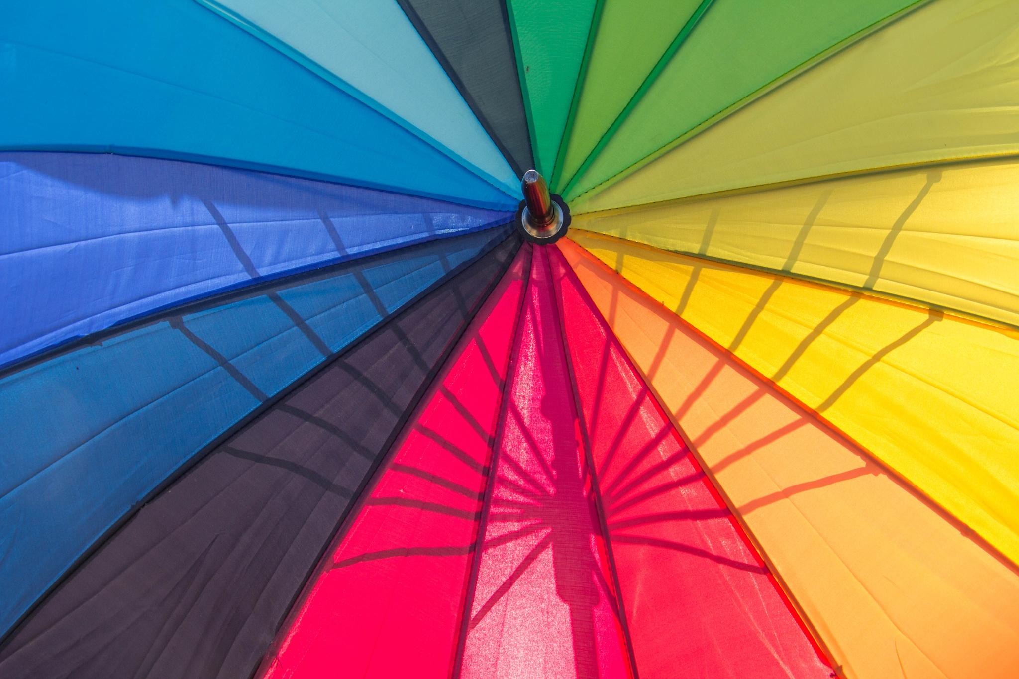 Multicolor by Carla Dias
