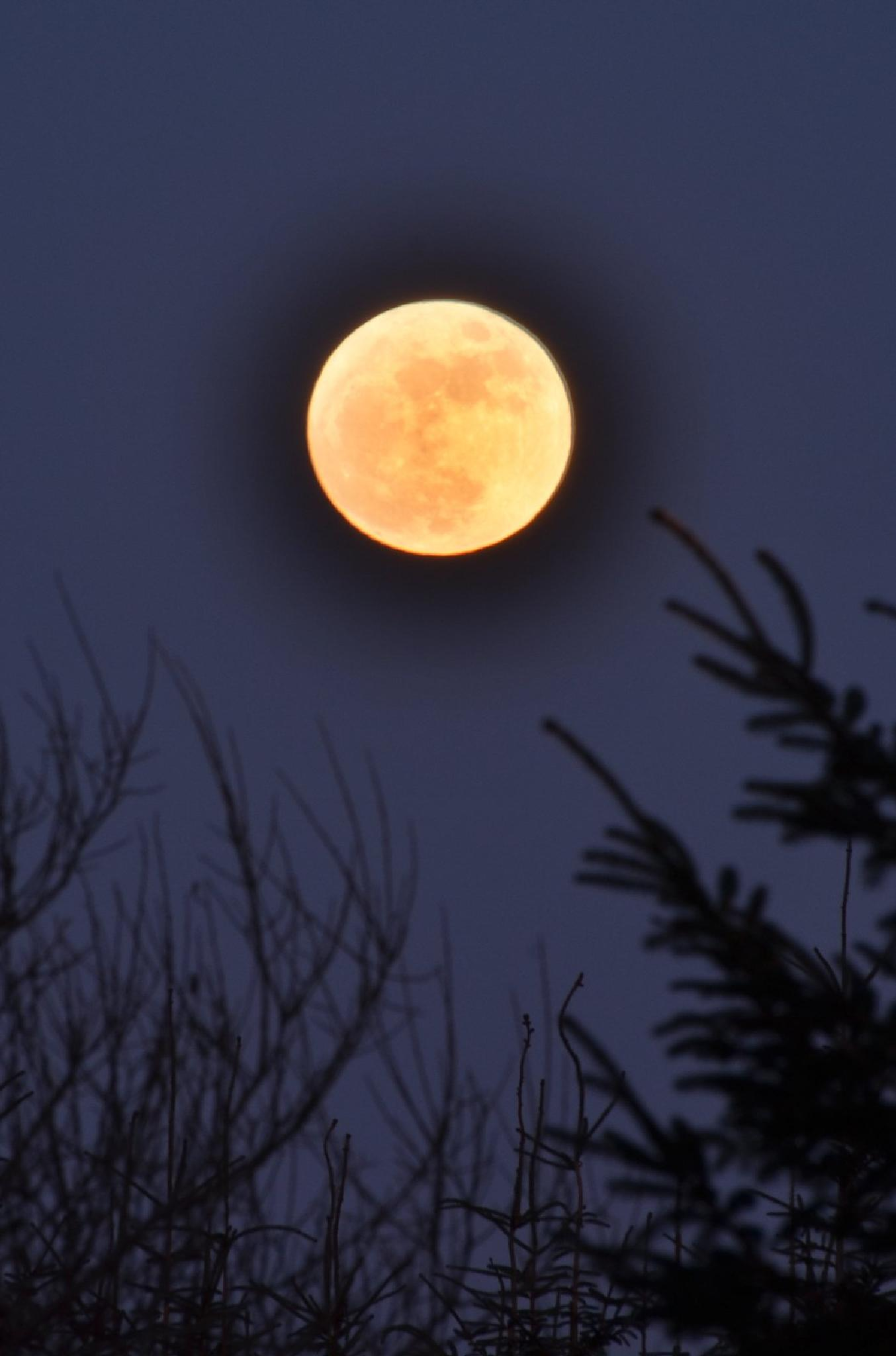 There's a big yellow moon over West Cork by jeffdixon