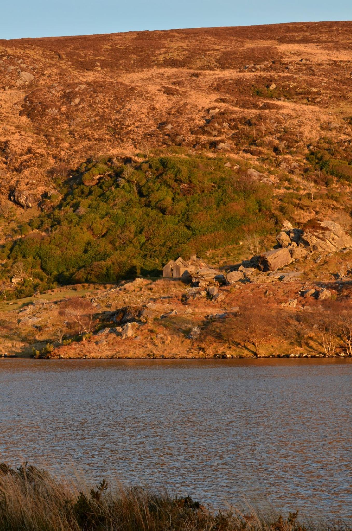 Looscauna Lough in the evening by jeffdixon