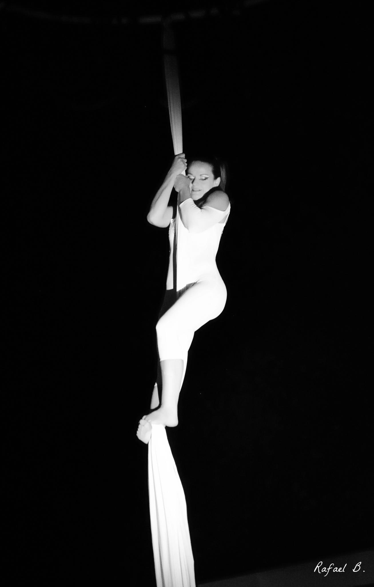 Circus by raymond.r.borenstein