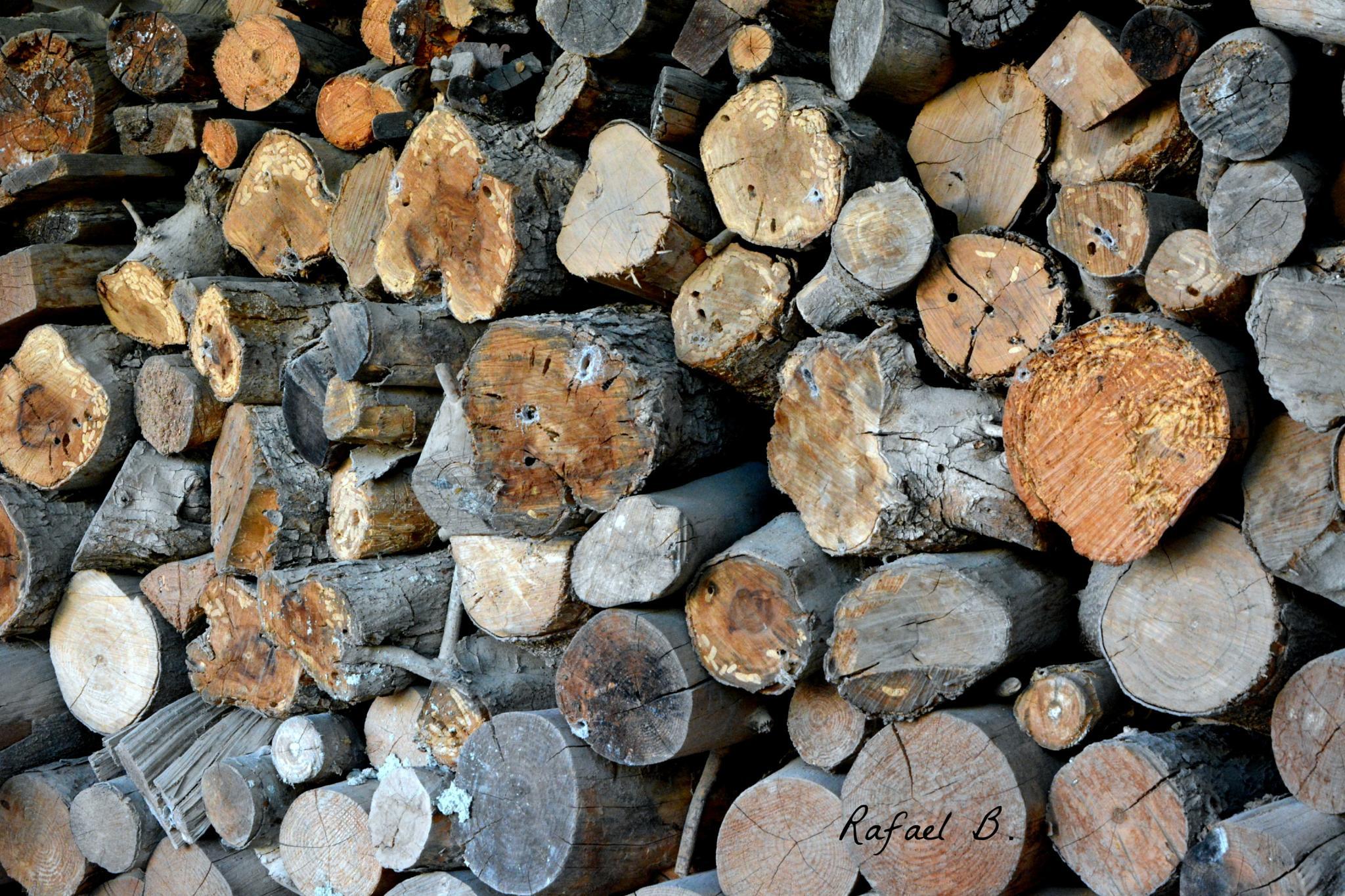 Logs by raymond.r.borenstein