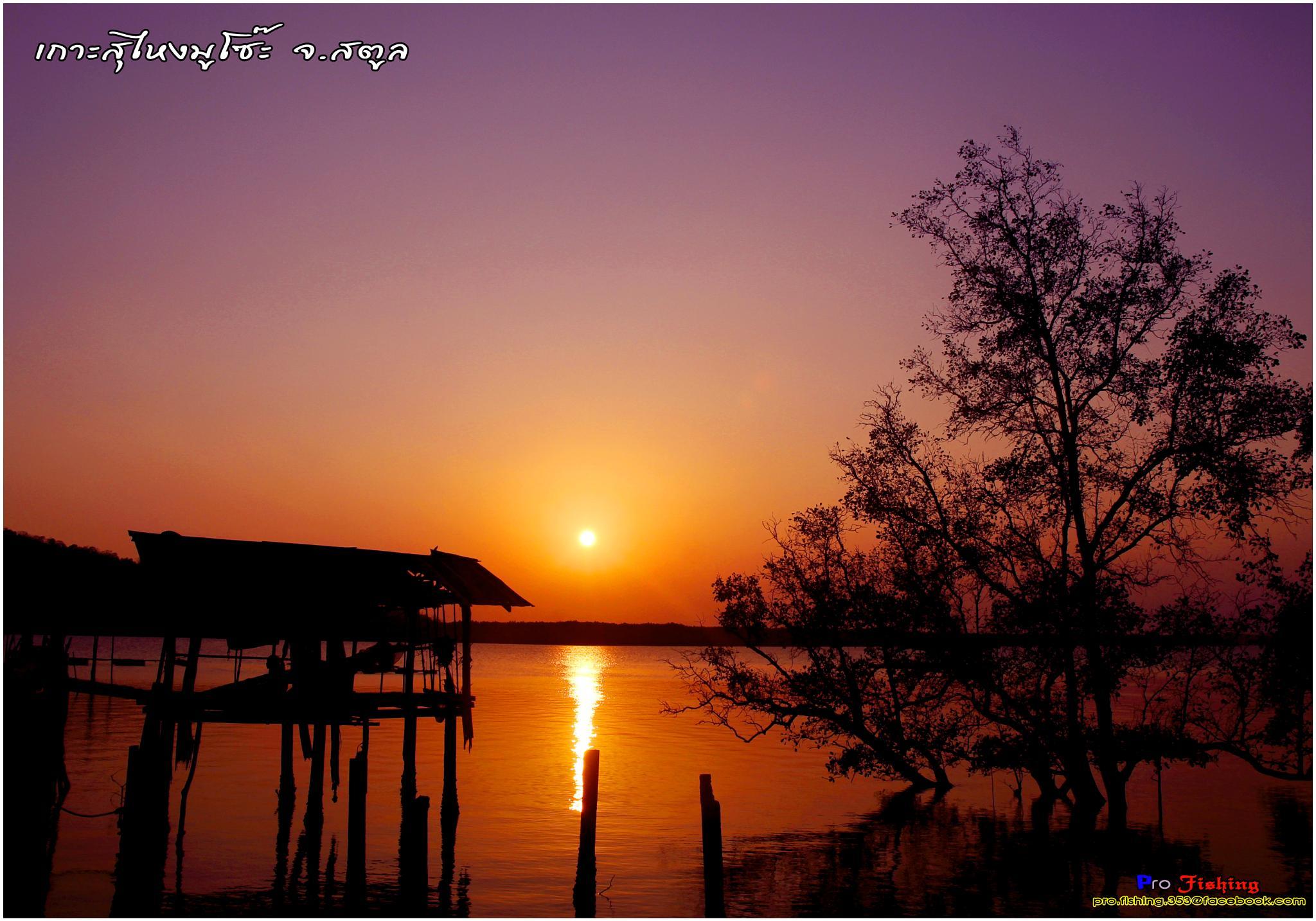 Sungaimusoh Village  by Pro Fishing Photographer