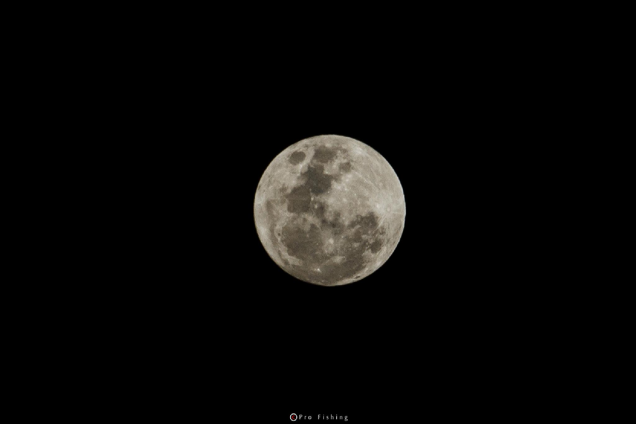 Full Moon  by Pro Fishing Photographer