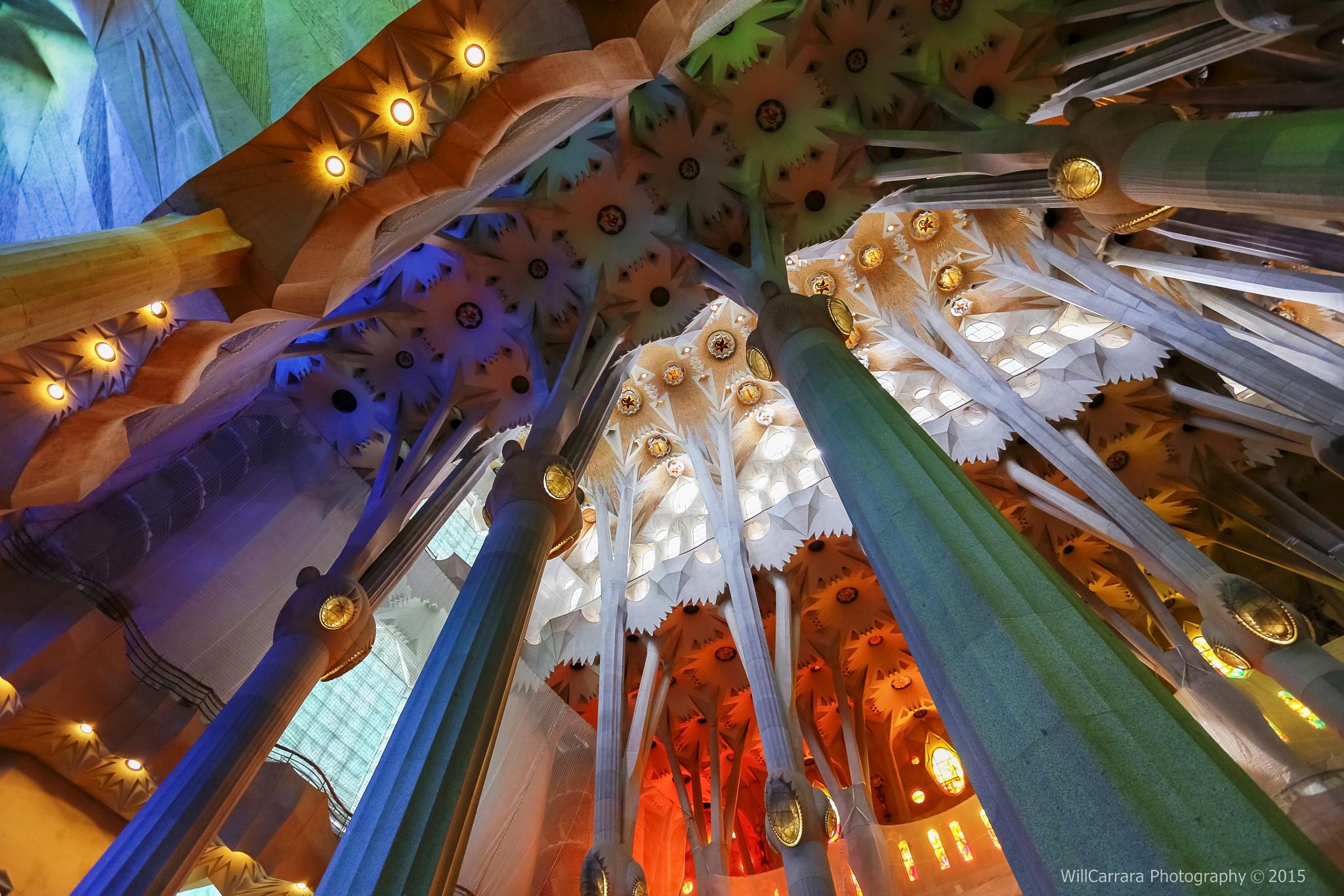 Detalhes da arquitetura, ilusão e cores  by Will Carrara Photographer