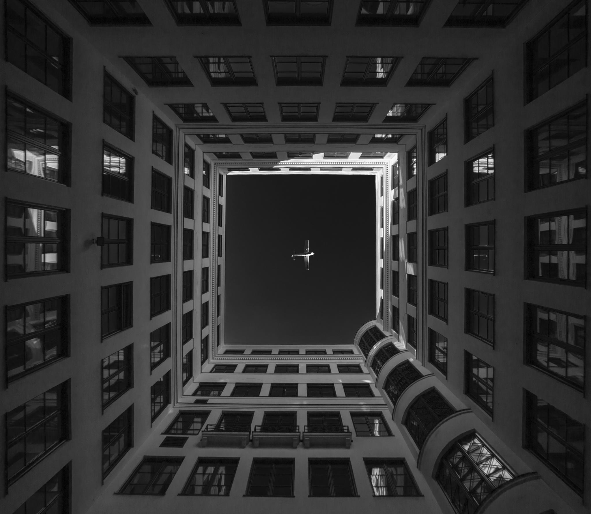freedom by Sebastian Helmke