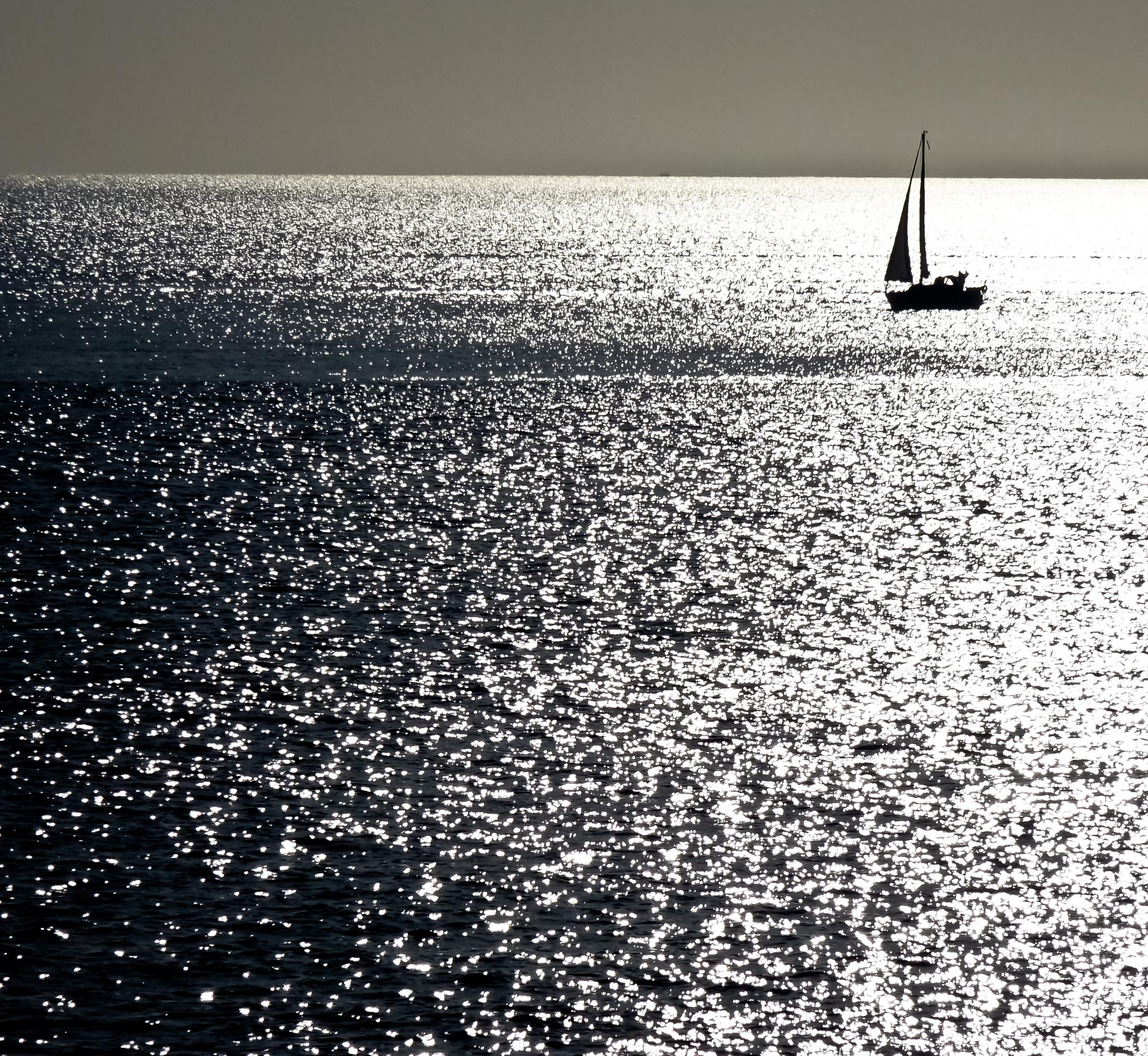 Sail away by Peter Edwardo Vicente.