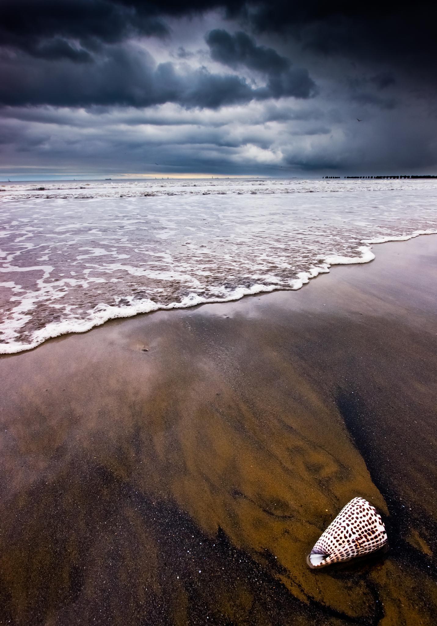 Photo in Sea and Sand #seashore