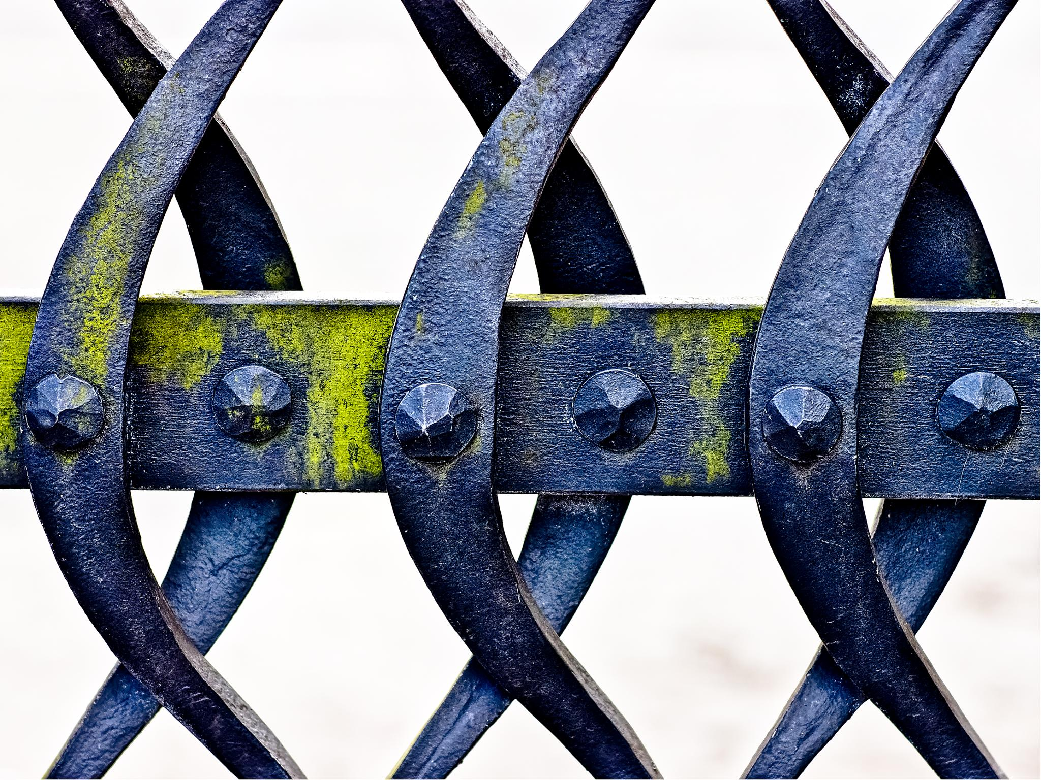 Iron work gate by Peter Edwardo Vicente.