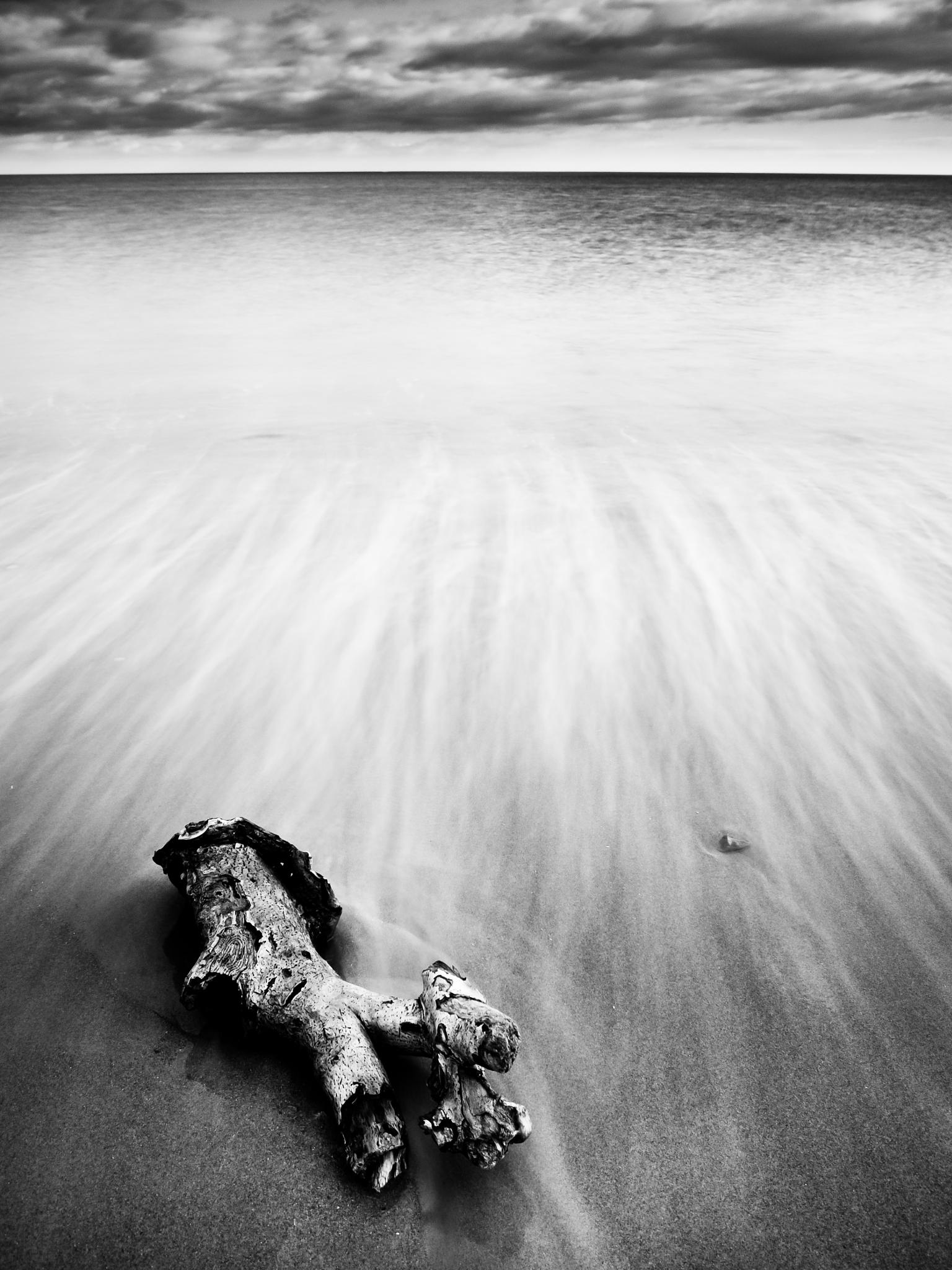Washed up! by Peter Edwardo Vicente.