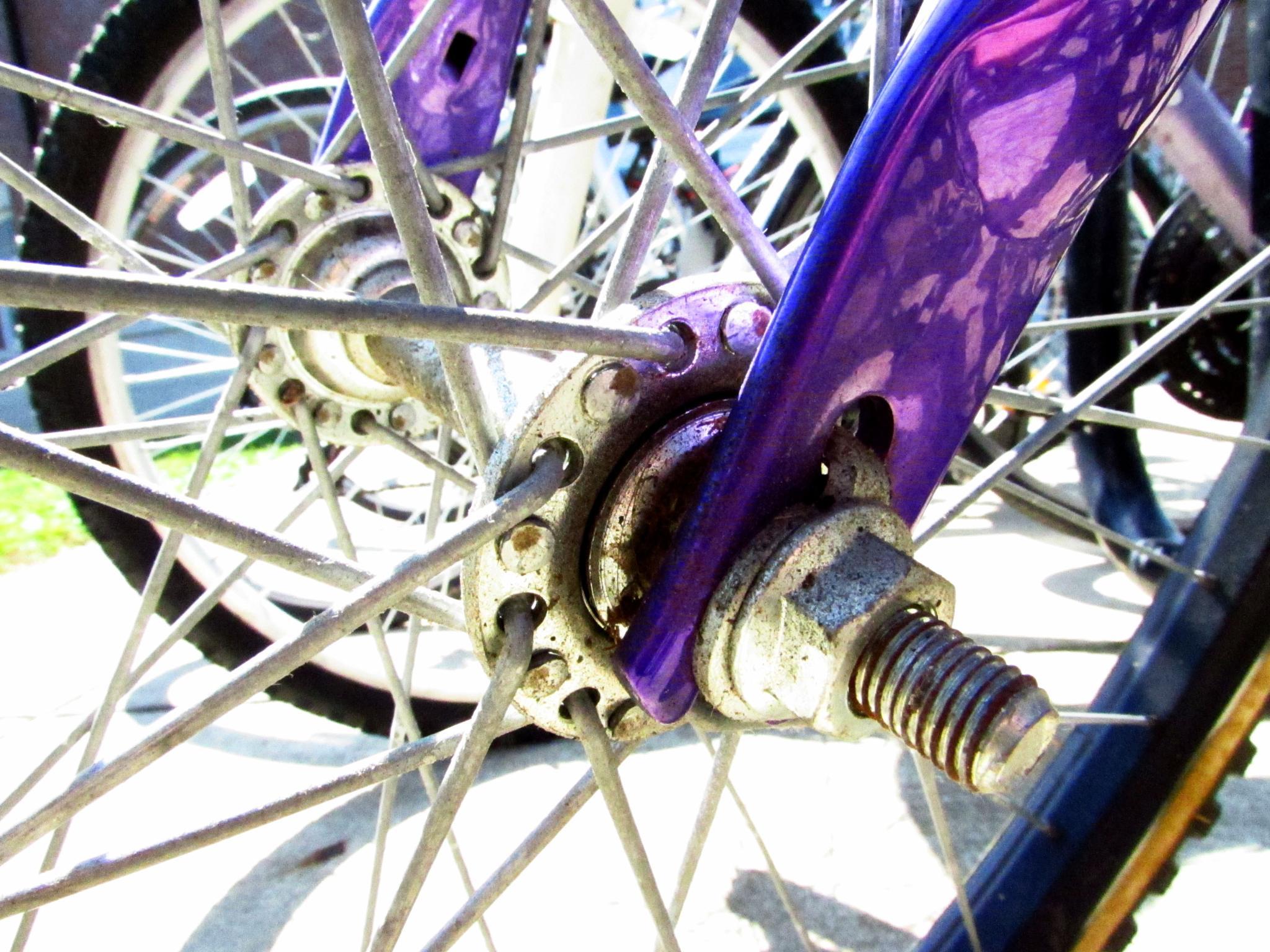 Purple & Spokes by Carolyn Volny