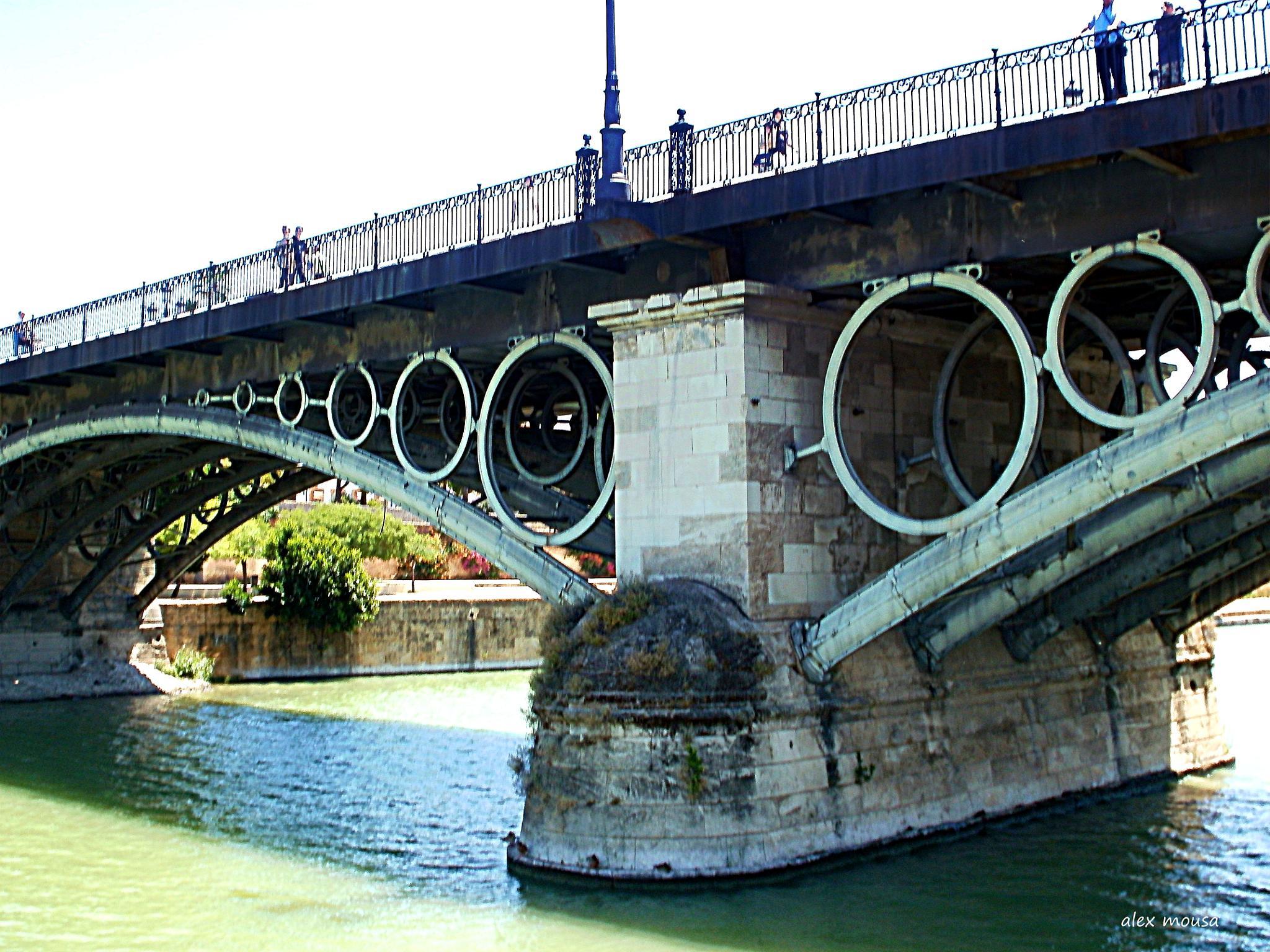 River Guadalquevir bridge by alexandra.tsamimousa