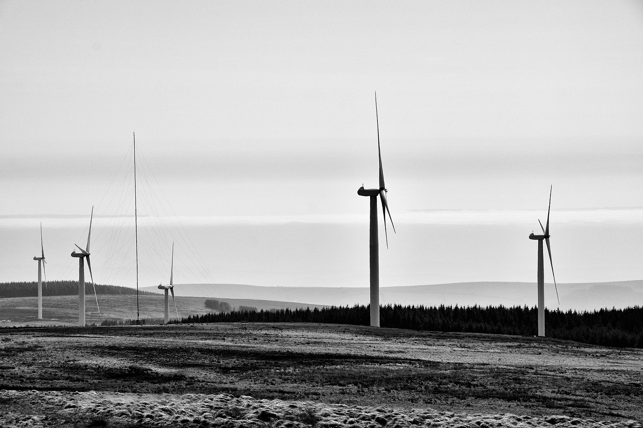 Photo in Black and White #black and white #landscape #countryside #b&w