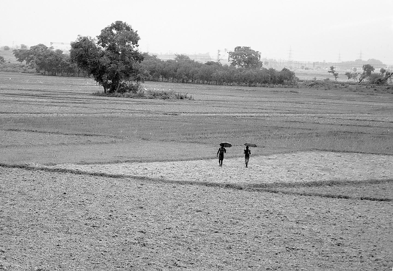 A solitary Walk by Sanjoy Mitra